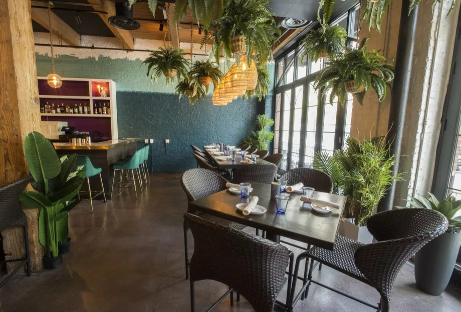 Flora Fauna's dining room is lit by natural lighting. The tropical-themed space is heavy on green and blue tones and is decorated with hanging lights, plants, and wicker chairs.