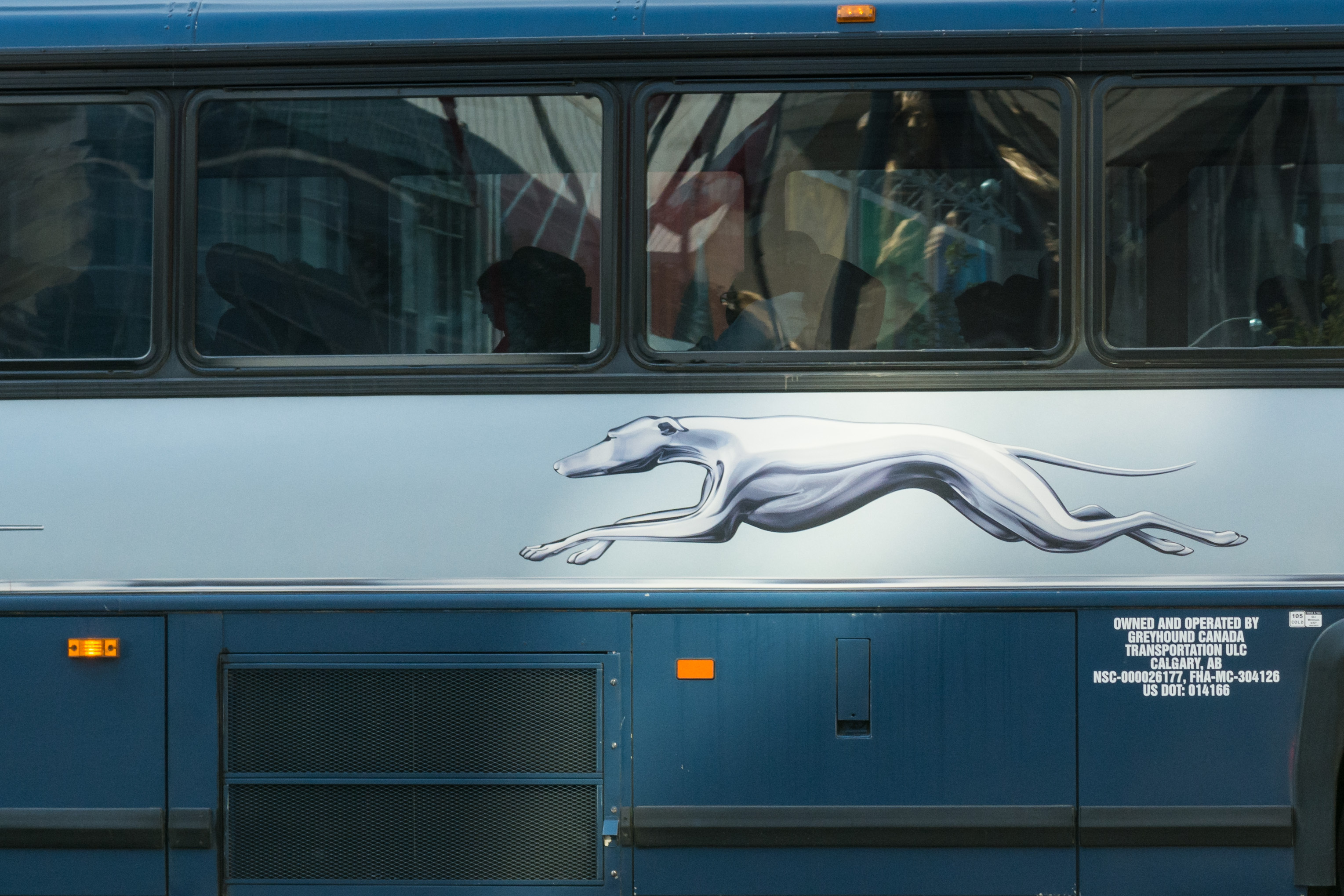 Closeup of a blue and silver bus. On a white strip below the windows, there's an image of a silver greyhound running.