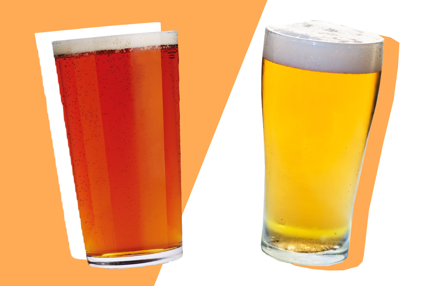 What's the Difference Between Ale and Lager?