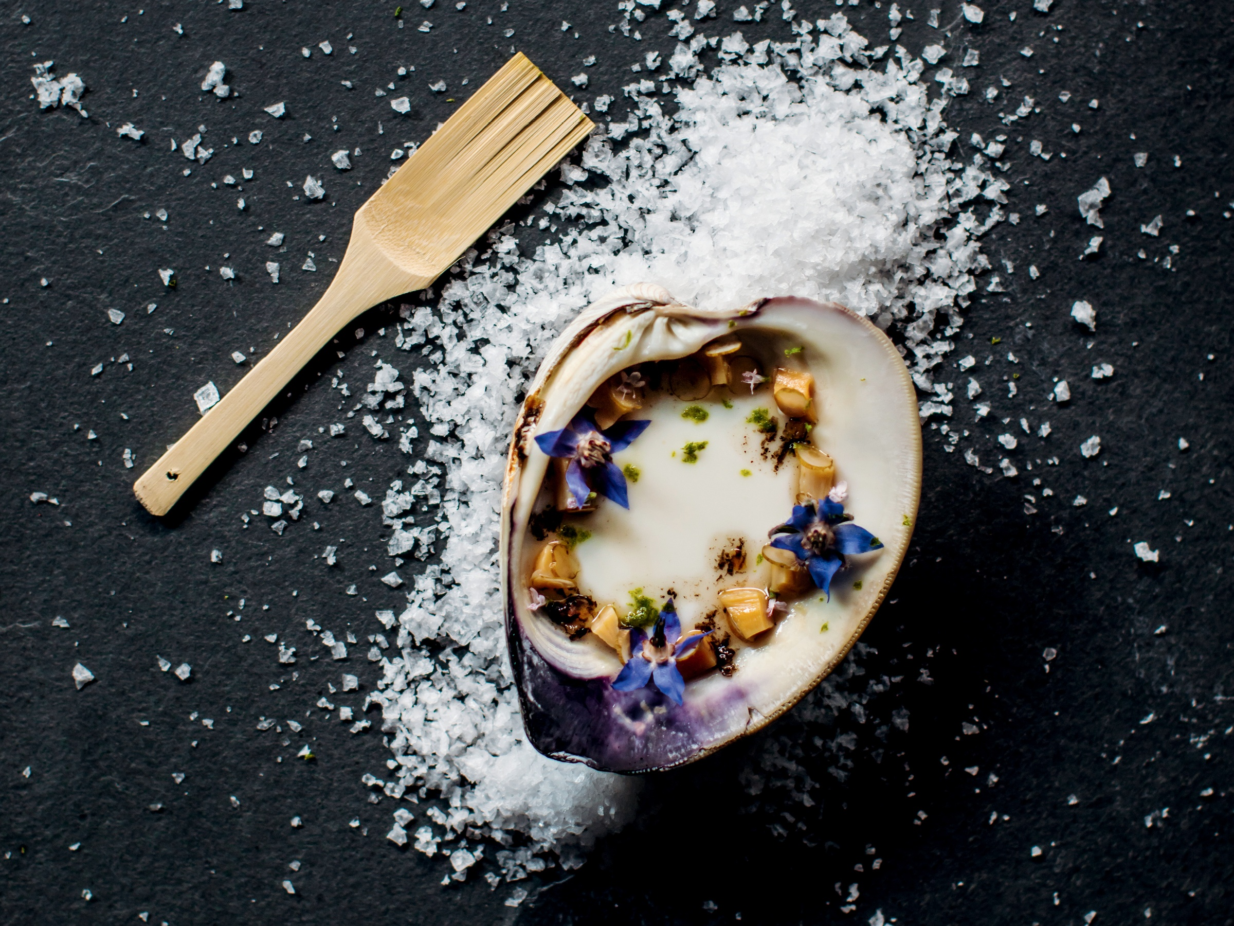 a shell with a creamy food and flowers in it on a bed of salt