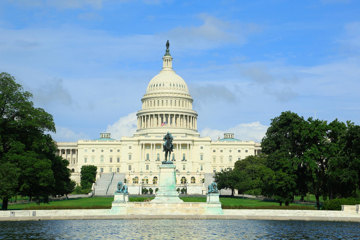 The United States Congress building in Washington D.C.