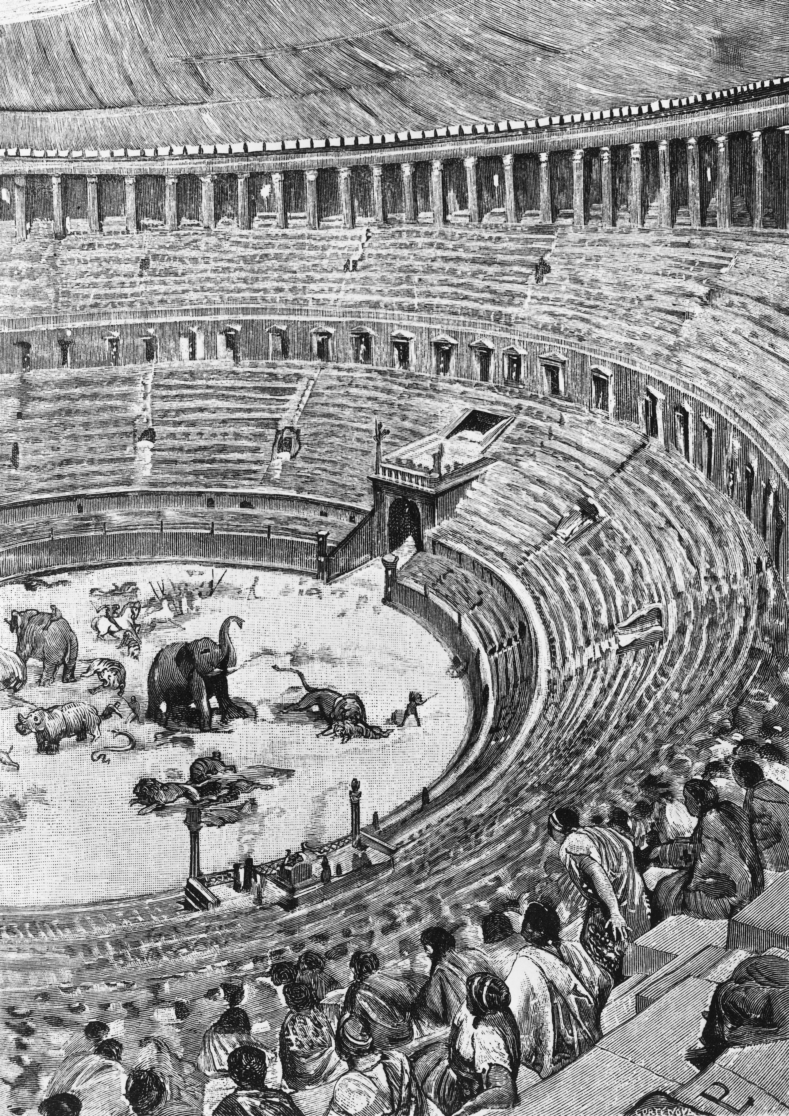 Inauguration of the Flavian Amphitheatre