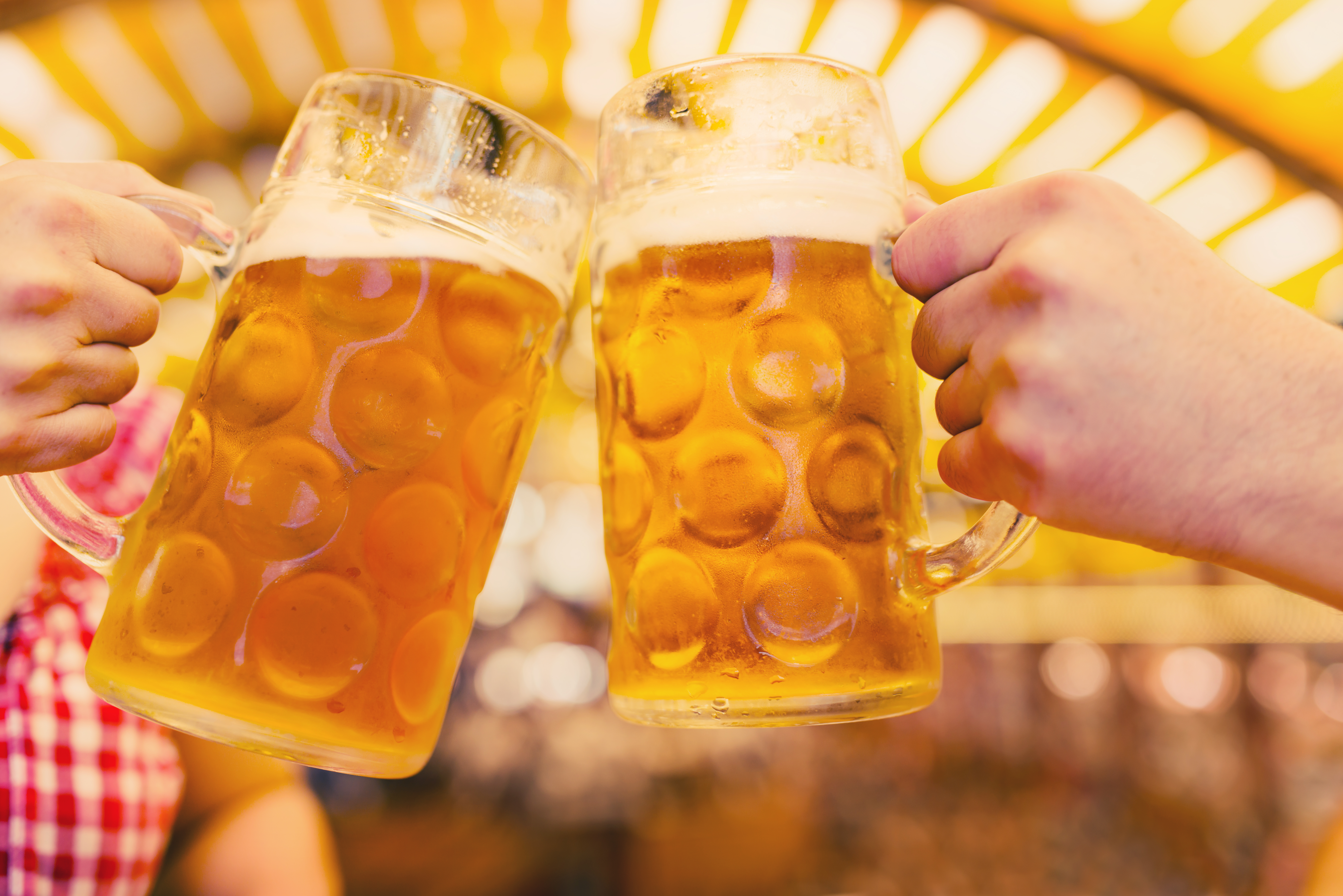 A stock photo of two beer steins clinking