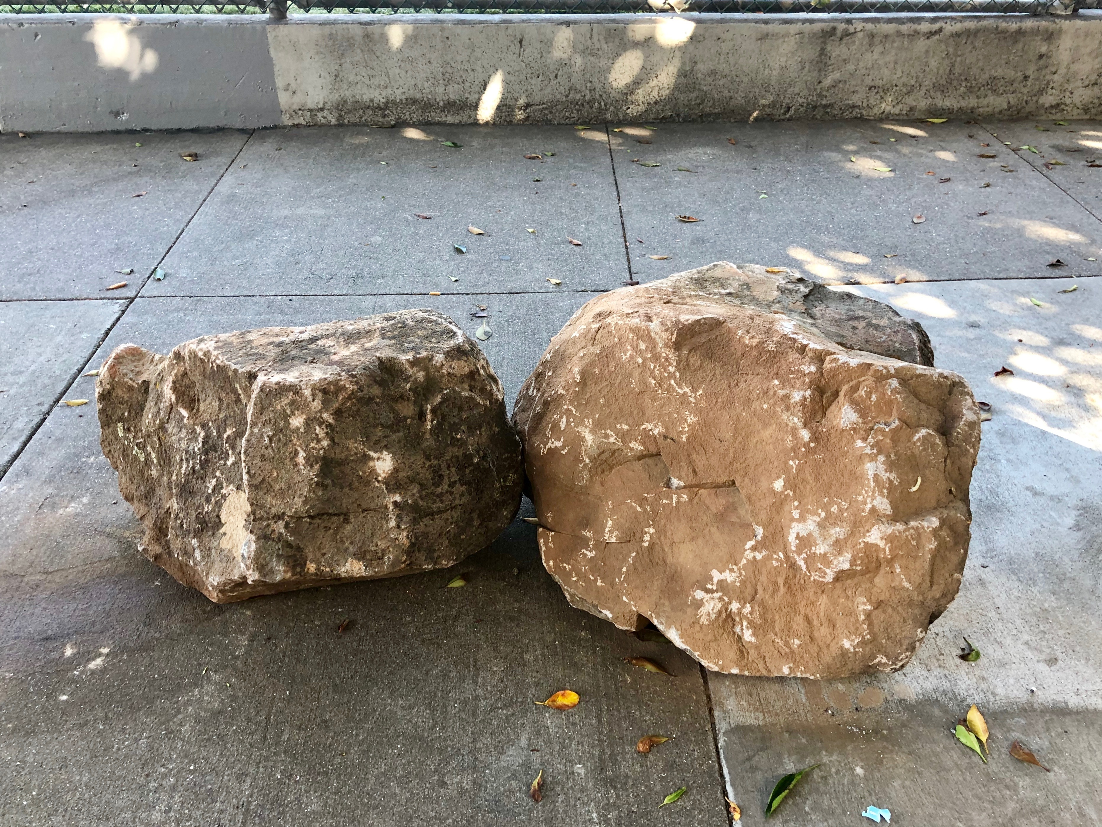 Two large brown boulders side-by-side on a sidewalk.