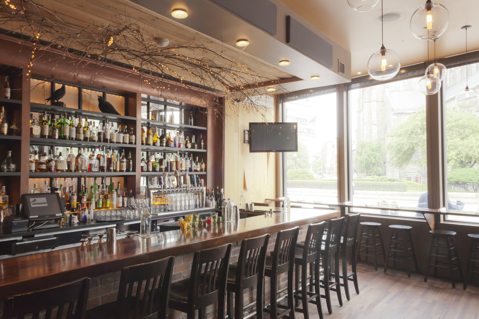Wooden bar stools line a bar with overhanging branches and a rear wall stocked with liquor bottles