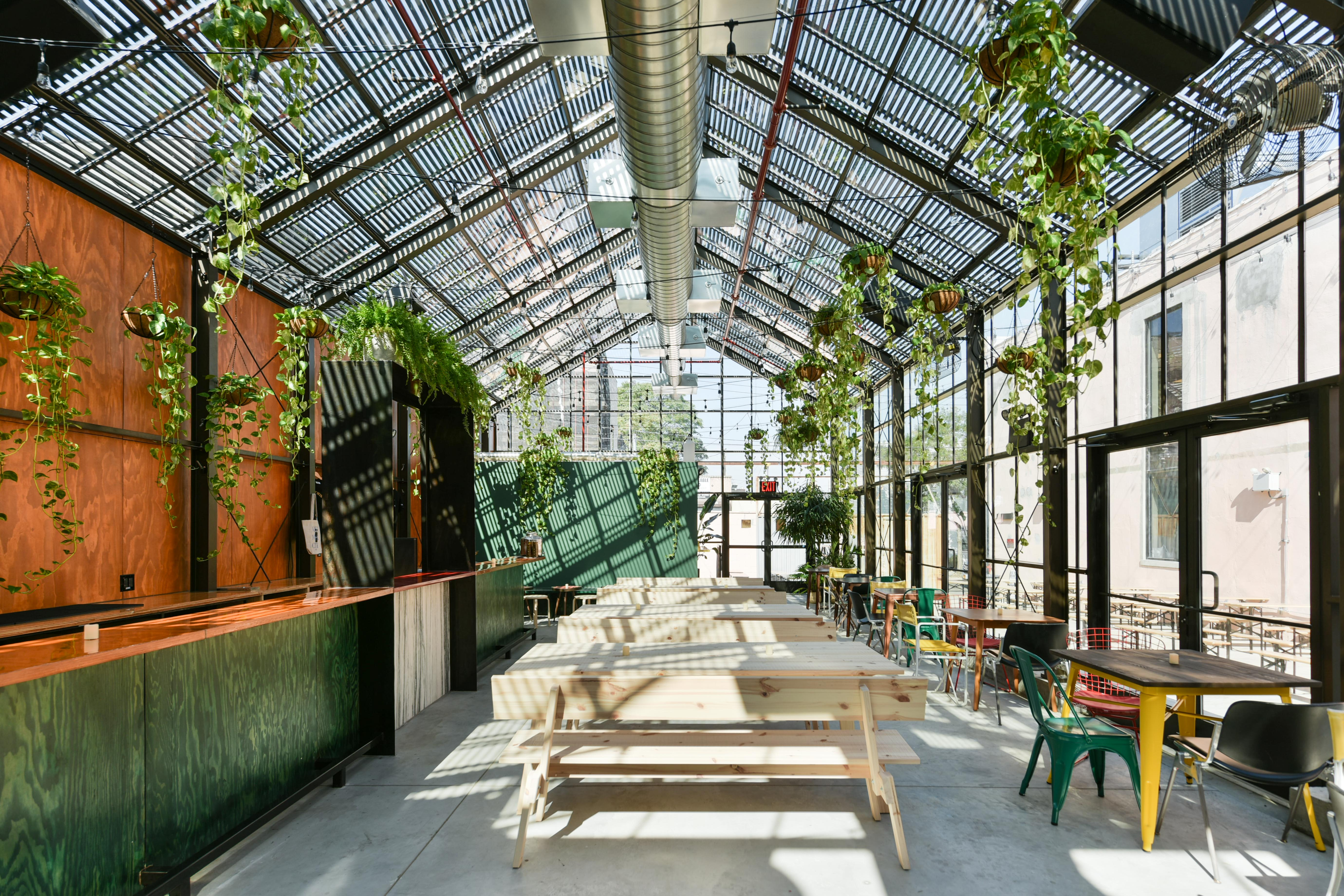 The inside of a greenhouse with plants hanging from the ceiling and wooden tables