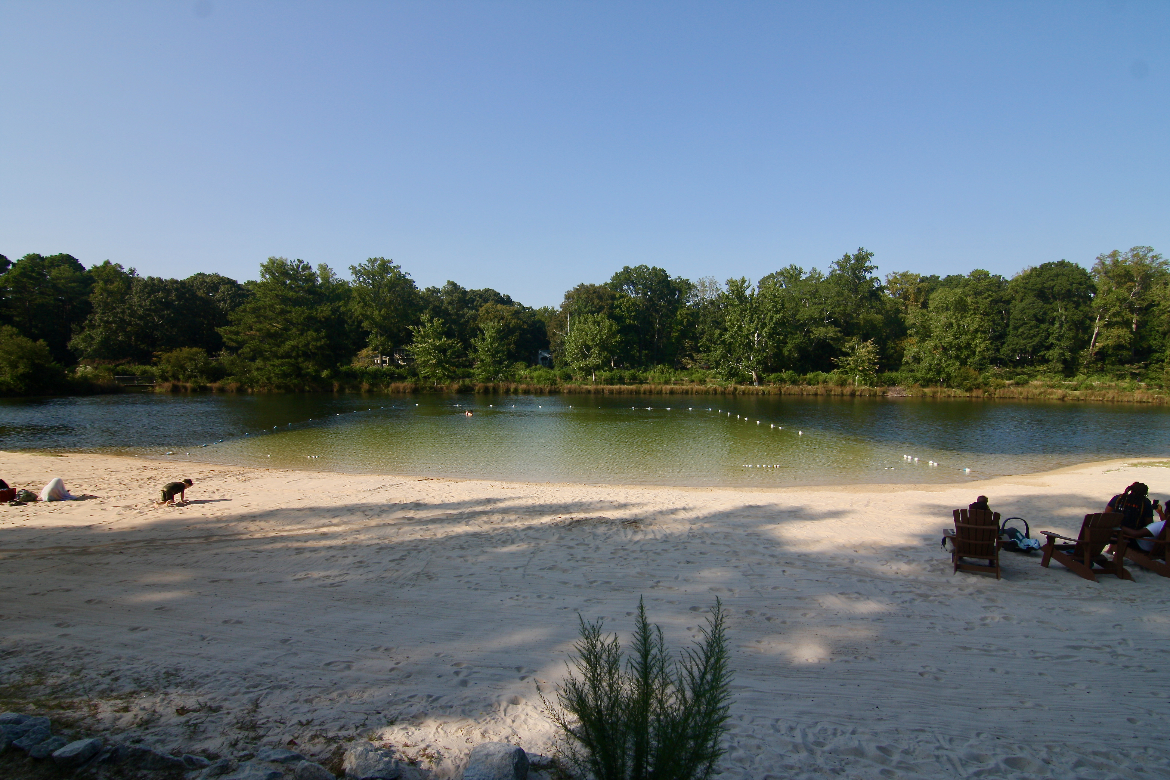 A lake with rope for public swimming and whitish sands with banks of trees beyond.