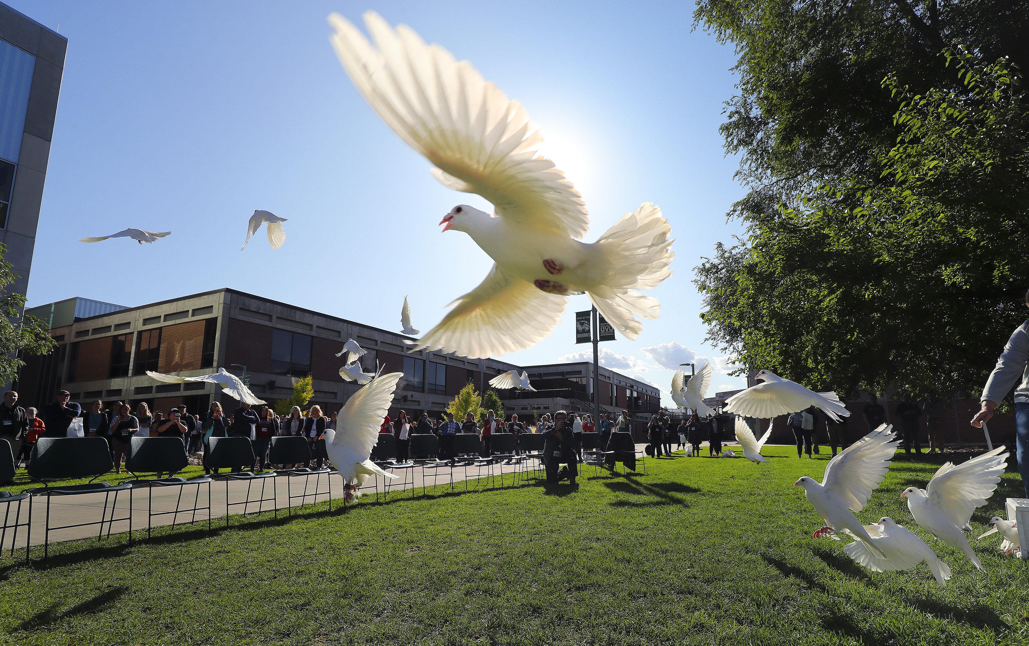 Thirty-three rock doves symbolizing suicide losses atUtah Valley University over the years are released during a suicide prevention conference at the Orem university on Friday, Oct. 4, 2019.