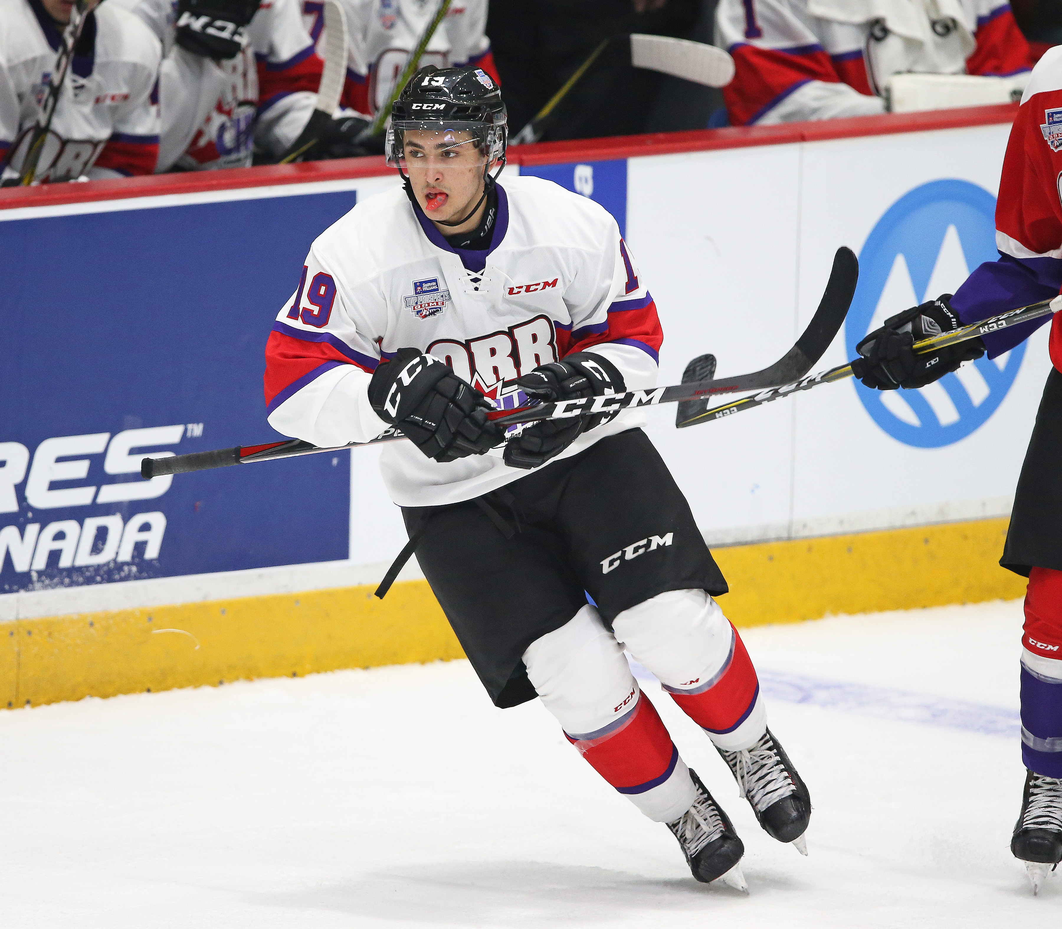Sherwin-Williams CHL/NHL Top Prospects