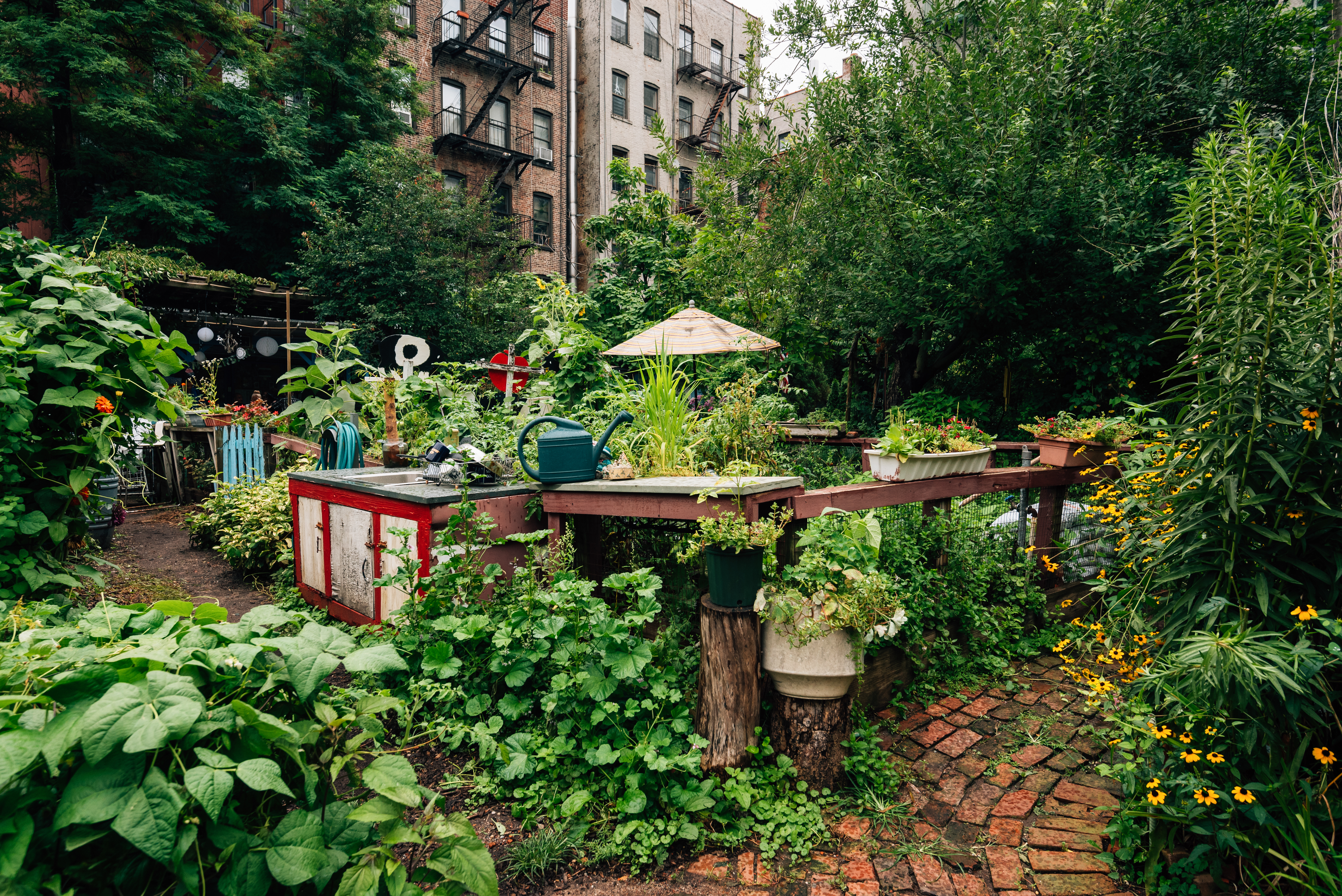 A garden lush with trees, leafy bushes, and flower beds in Manhattan.