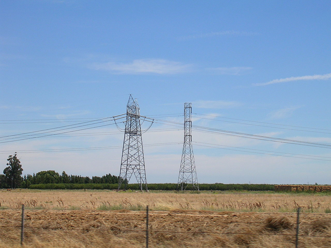 Power lines and towers surrounded by dry, yellow grass.