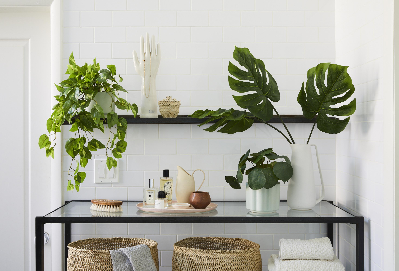 Fake plants sitting on shelf.