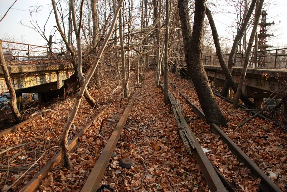 Leaves and trees grow from a disused portion of track, formerly the LIRR Rockaway Beach Branch.