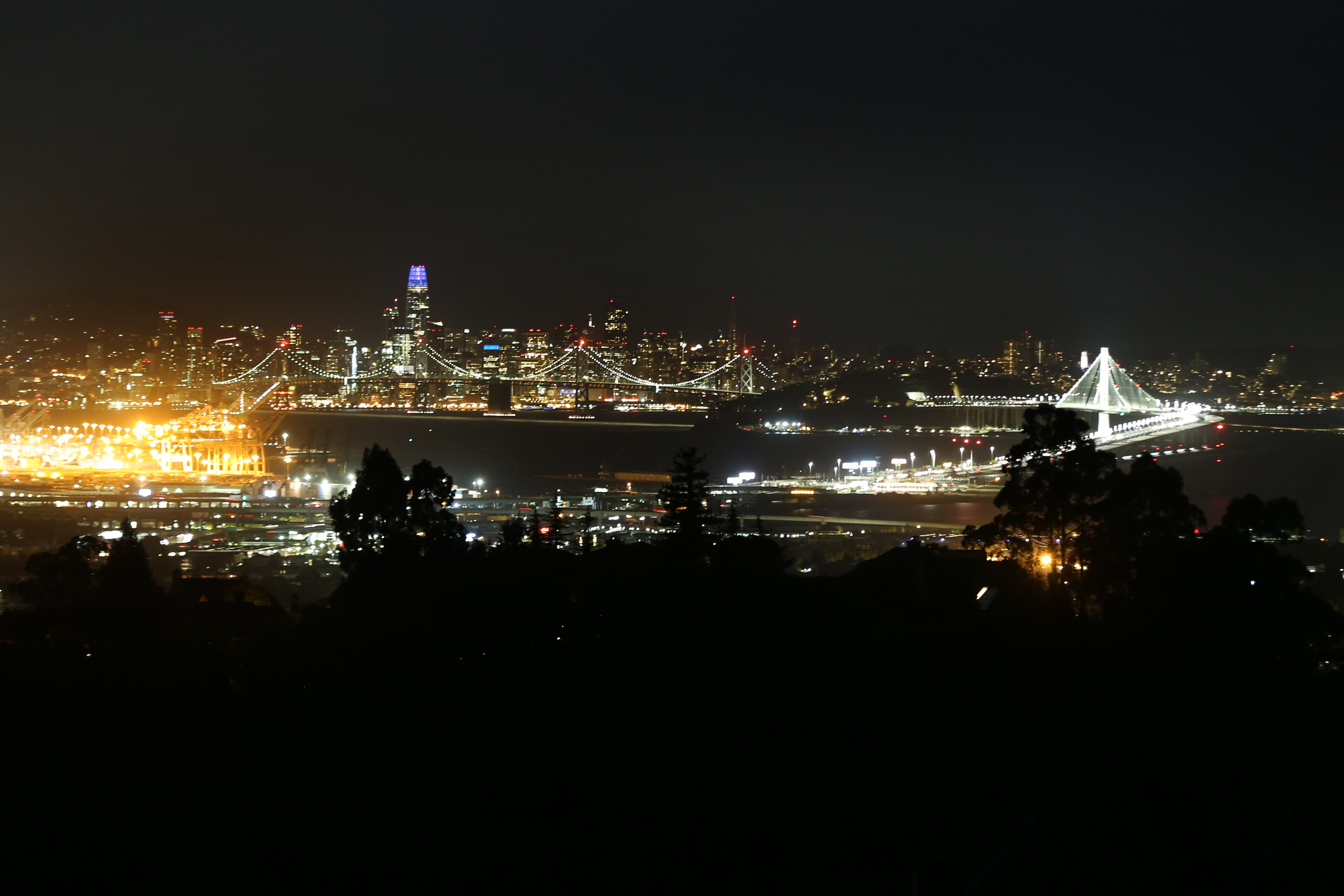 Darkened trees in the foreground, with tall buildings shimmering with lights in another city on the other side of a bay in the background.