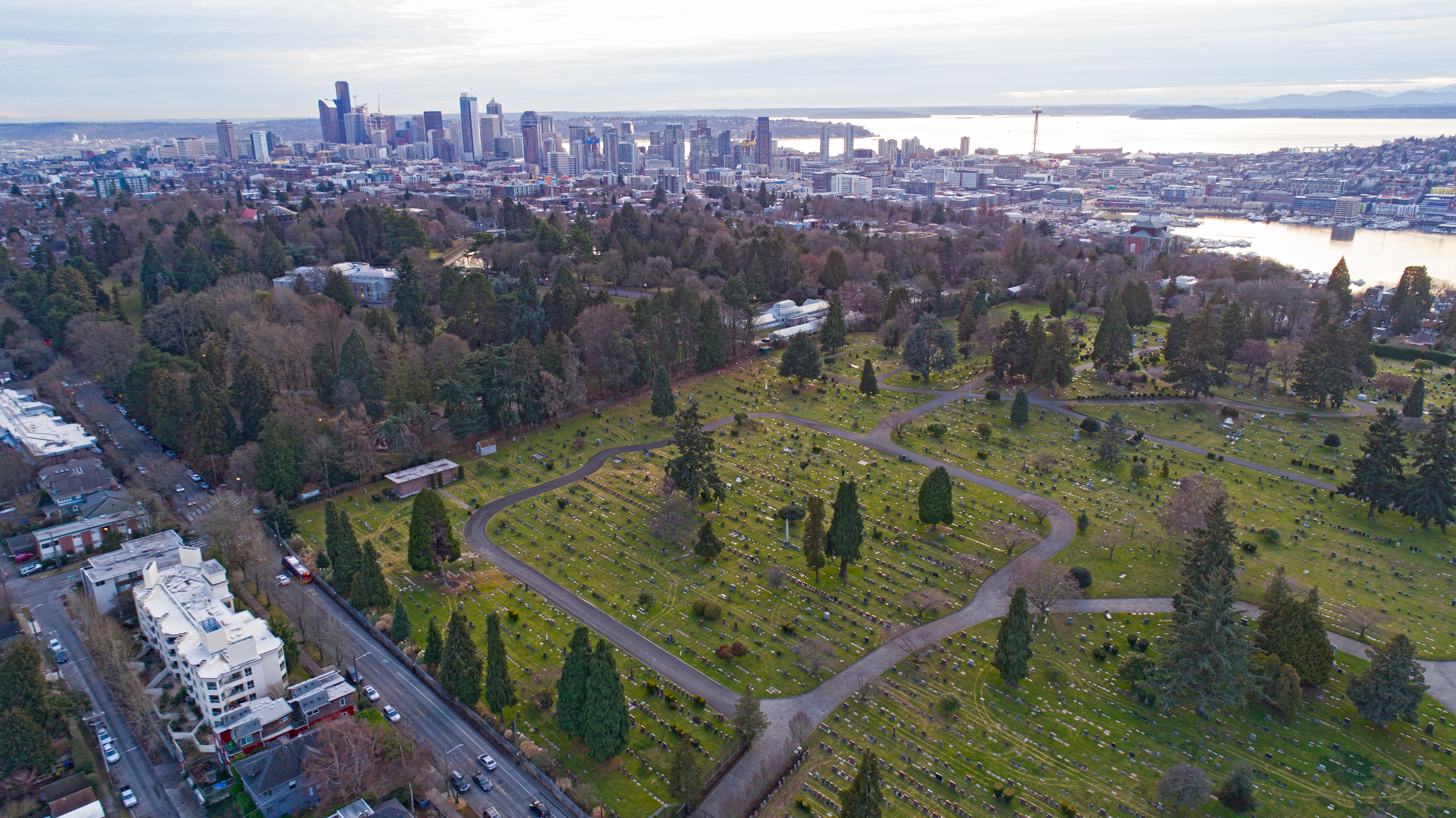 An aerial photograph of a large lawn with concrete paths, full of graves and dotted with evergreen trees. A busy road runs to the left, and skyscrapers and a lake are visible in the distance.
