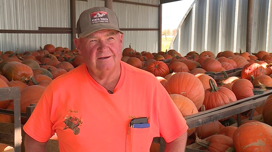 David Beck discusses last week's hard freeze that wiped out an estimated 500 tons of pumpkins during an interview at Beck Family Farms in Centerfield, Sanpete County, on Wednesday, Oct. 16, 2019.