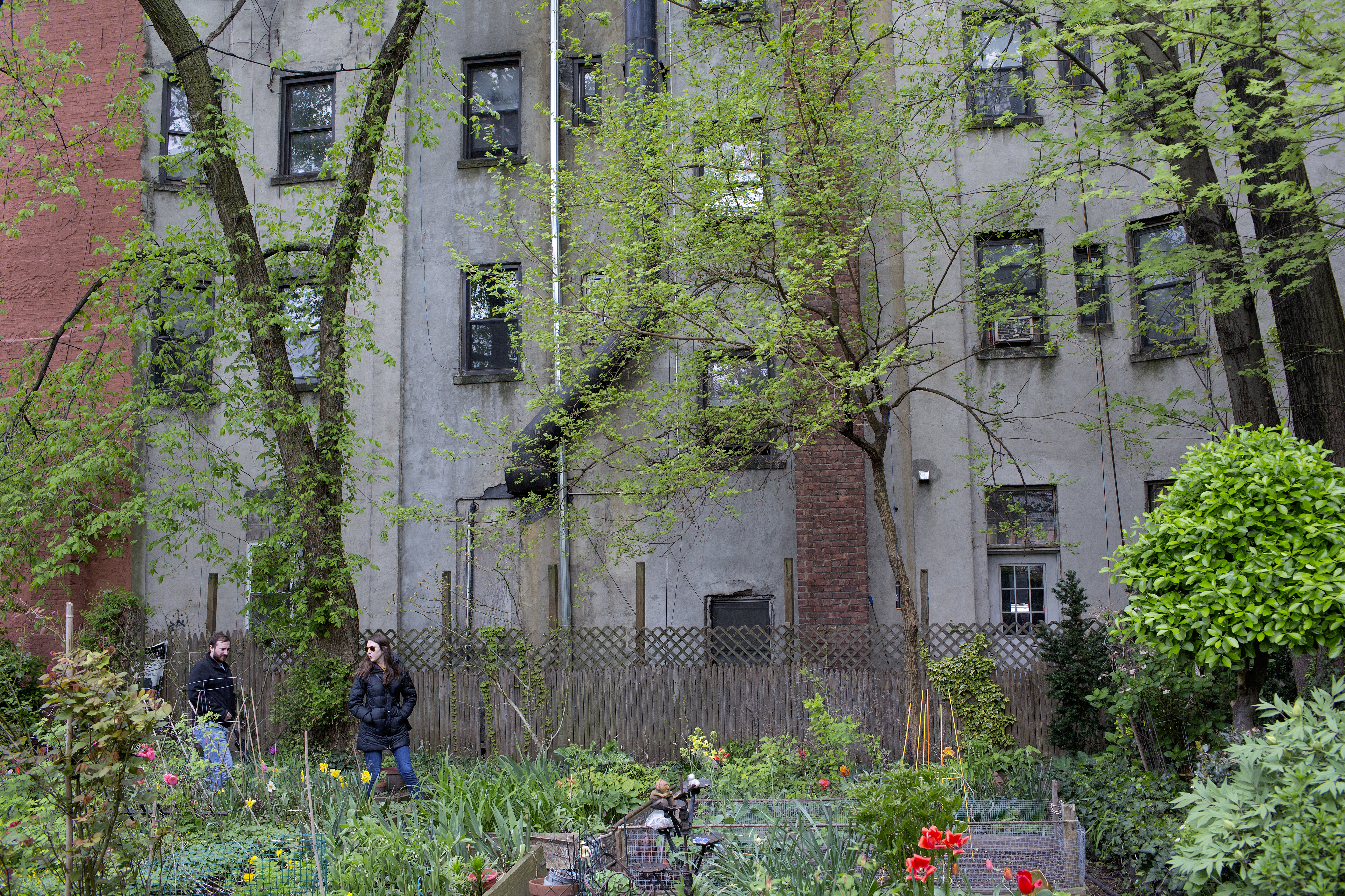 Dozens of NYC community gardens could close over contract dispute