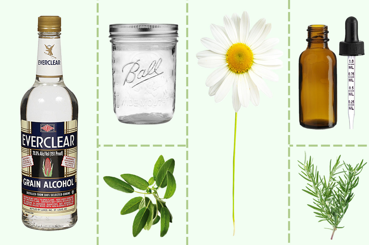 On a light green background, images of a bottle of Everclear vodka, a Ball jar, amber bottle with dropper, and some botanicals