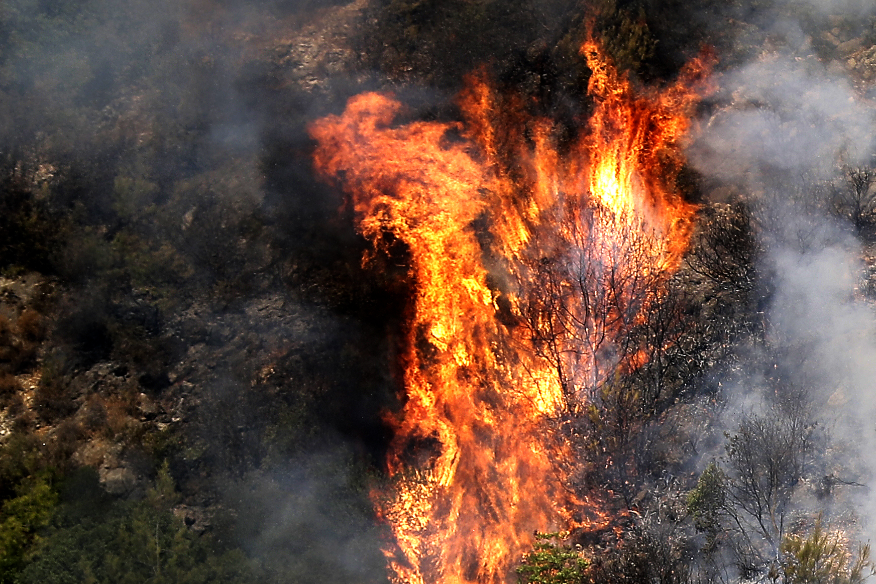 Wildfires are raging in Lebanon. Experts say they saw this coming.