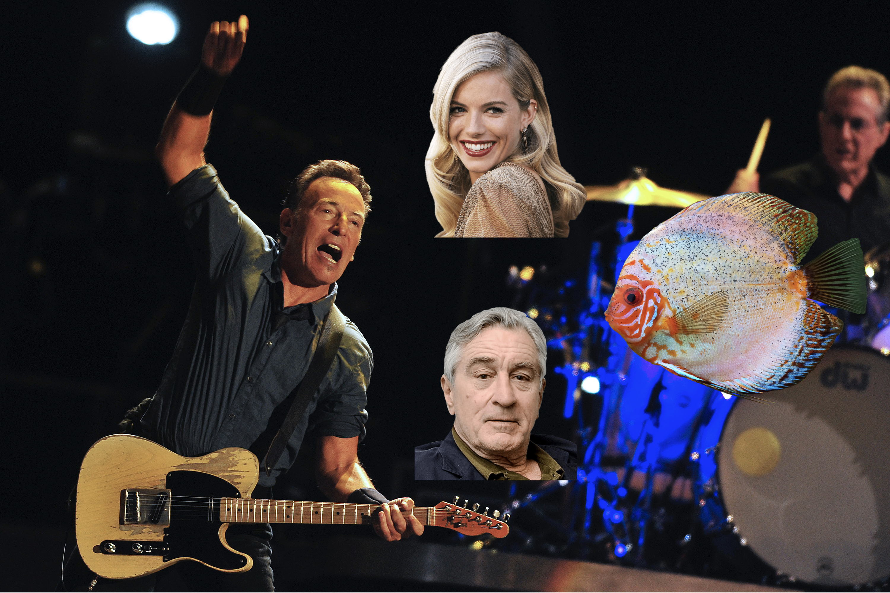 Bruce Springsteen's Atlantic City could be a London seafood bar