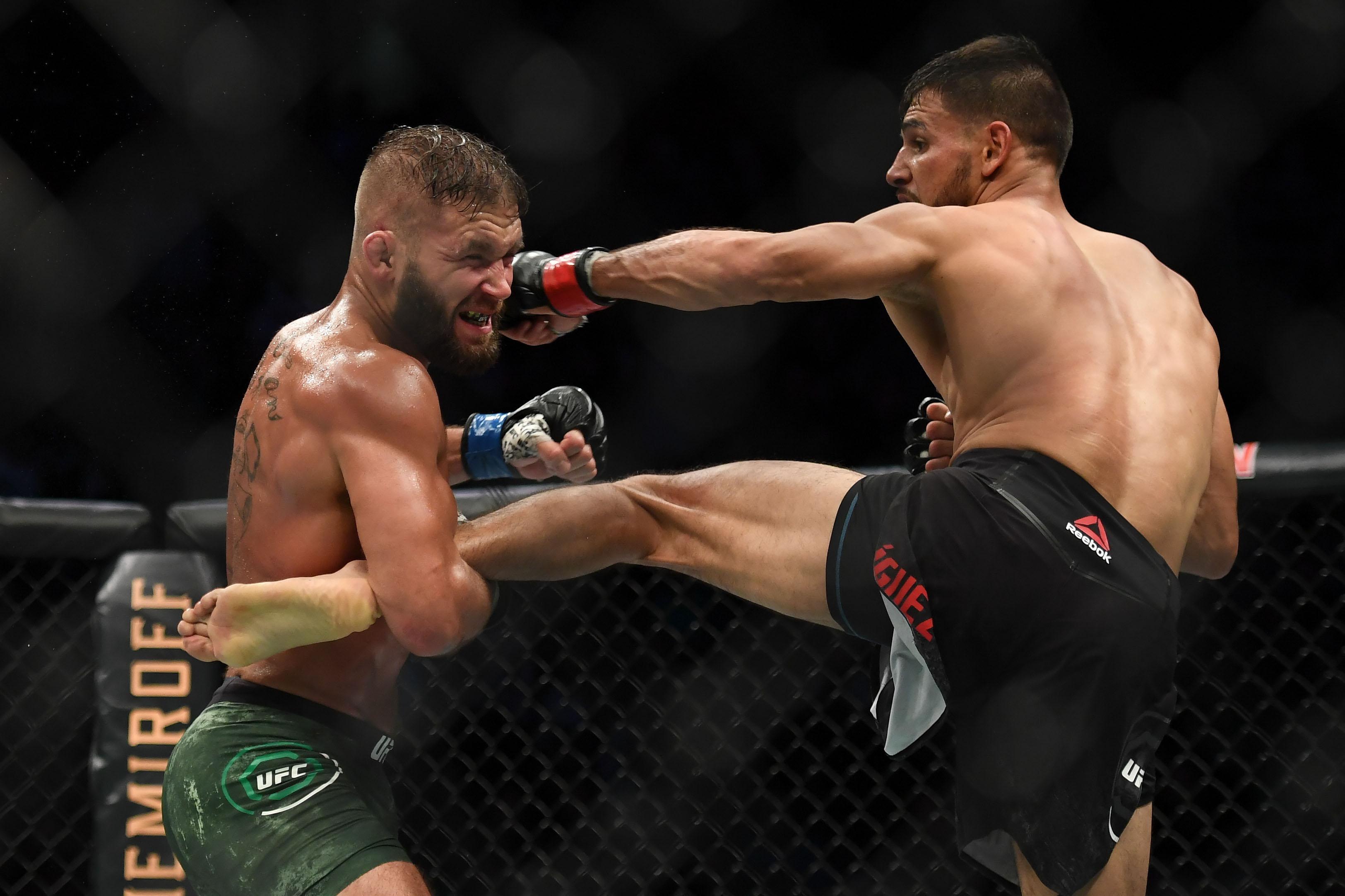 MMA: UFC Fight Night-Boston-Rodriguez vs Stephens