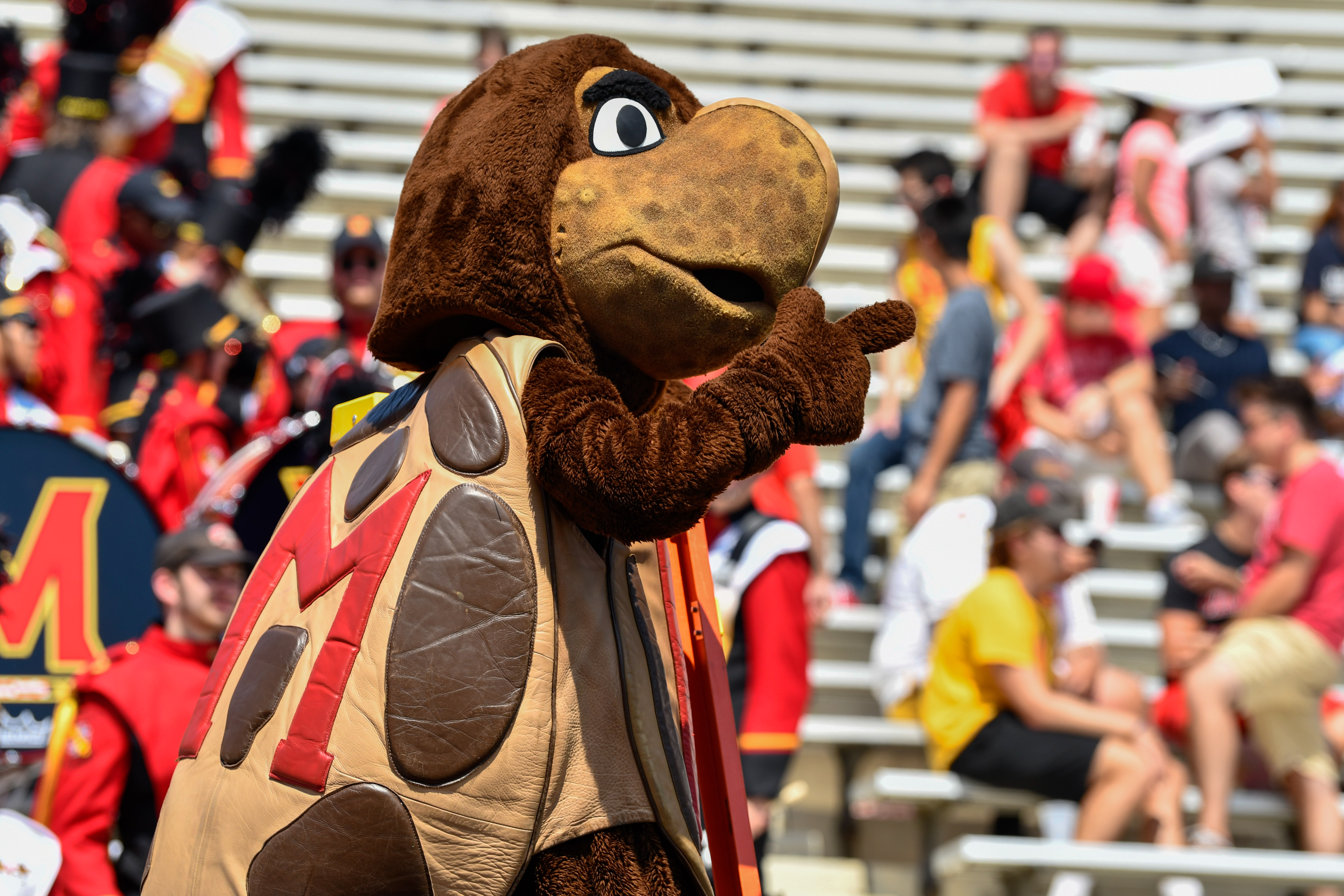 Maryland football Syracuse Terp