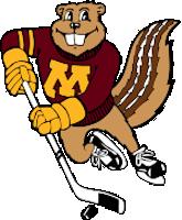 Minnesota Logo