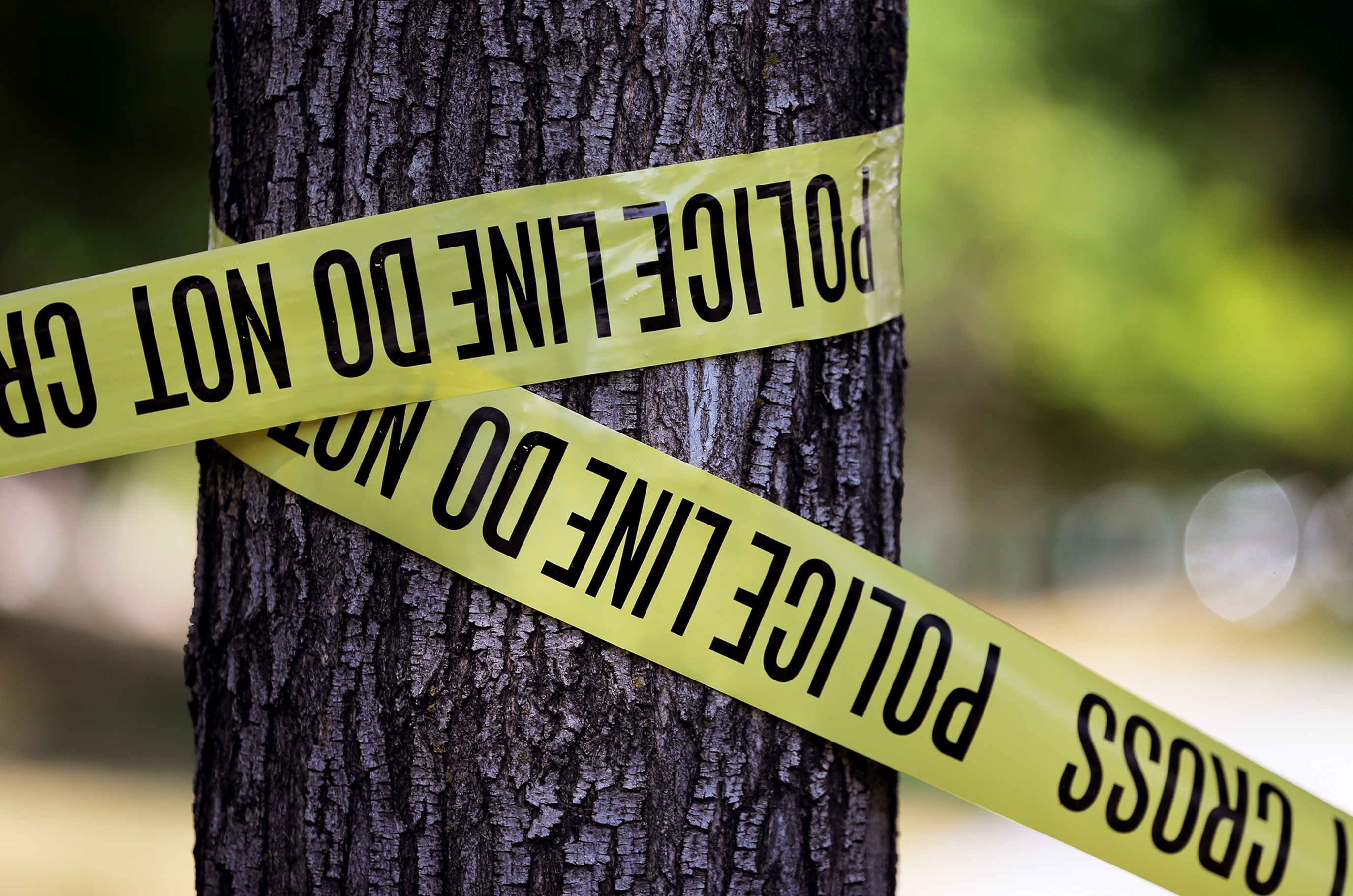 An Idaho woman died Saturday night after she was hit by a vehicle in Layton, police said.