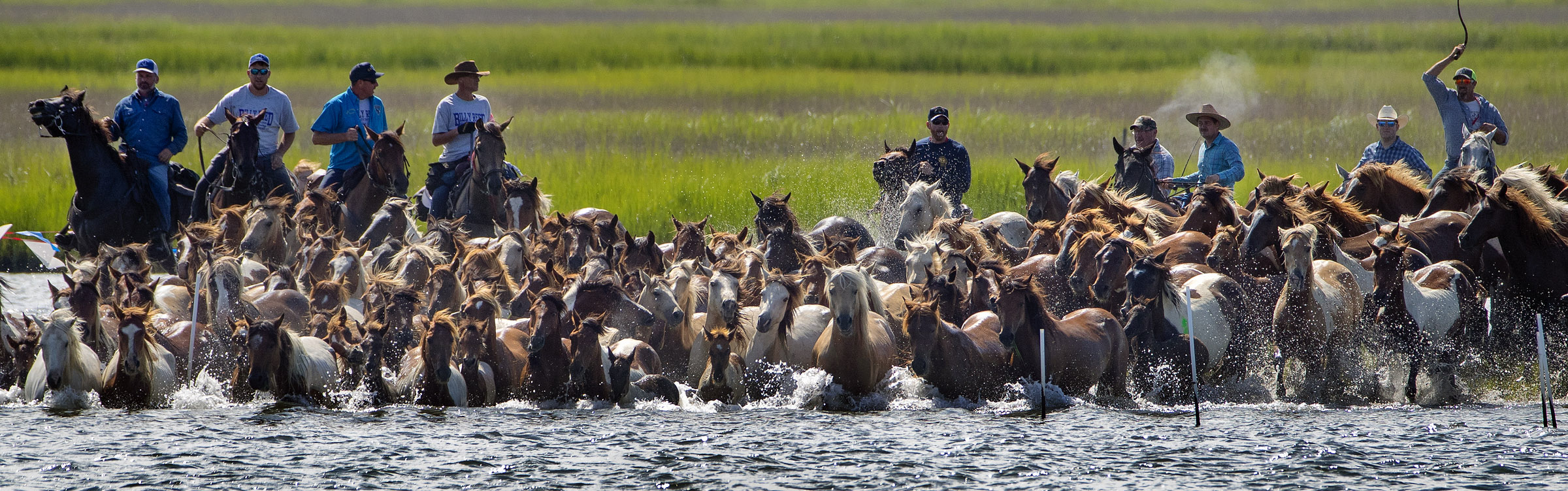 Volunteers with the Salt Water Cowboys push wild ponies and foals off of Assateague Island, Va., for their swim to nearby Chincoteague Island during the 94-year-old swim tradition of Pony Penning on Wednesday, July 24, 2019. During the event, the horses navigate through the water for a couple hundred yards, and, after resting, are walked down the streets of Chincoteague and eventually end up at a carnival where the foals are actioned.