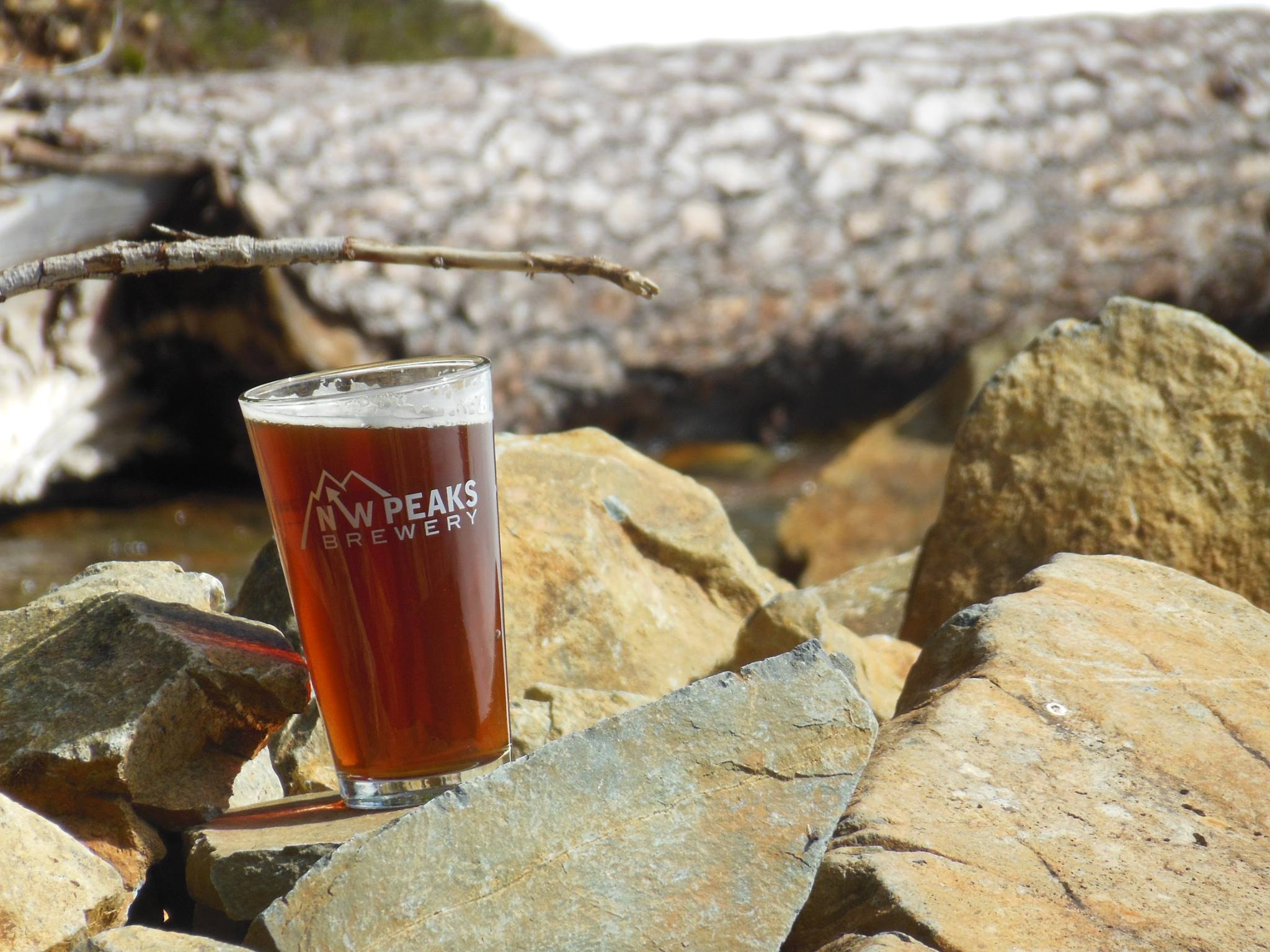 A view of a pint glass showing the NW Peaks logo, sitting on a rock cropping outside.