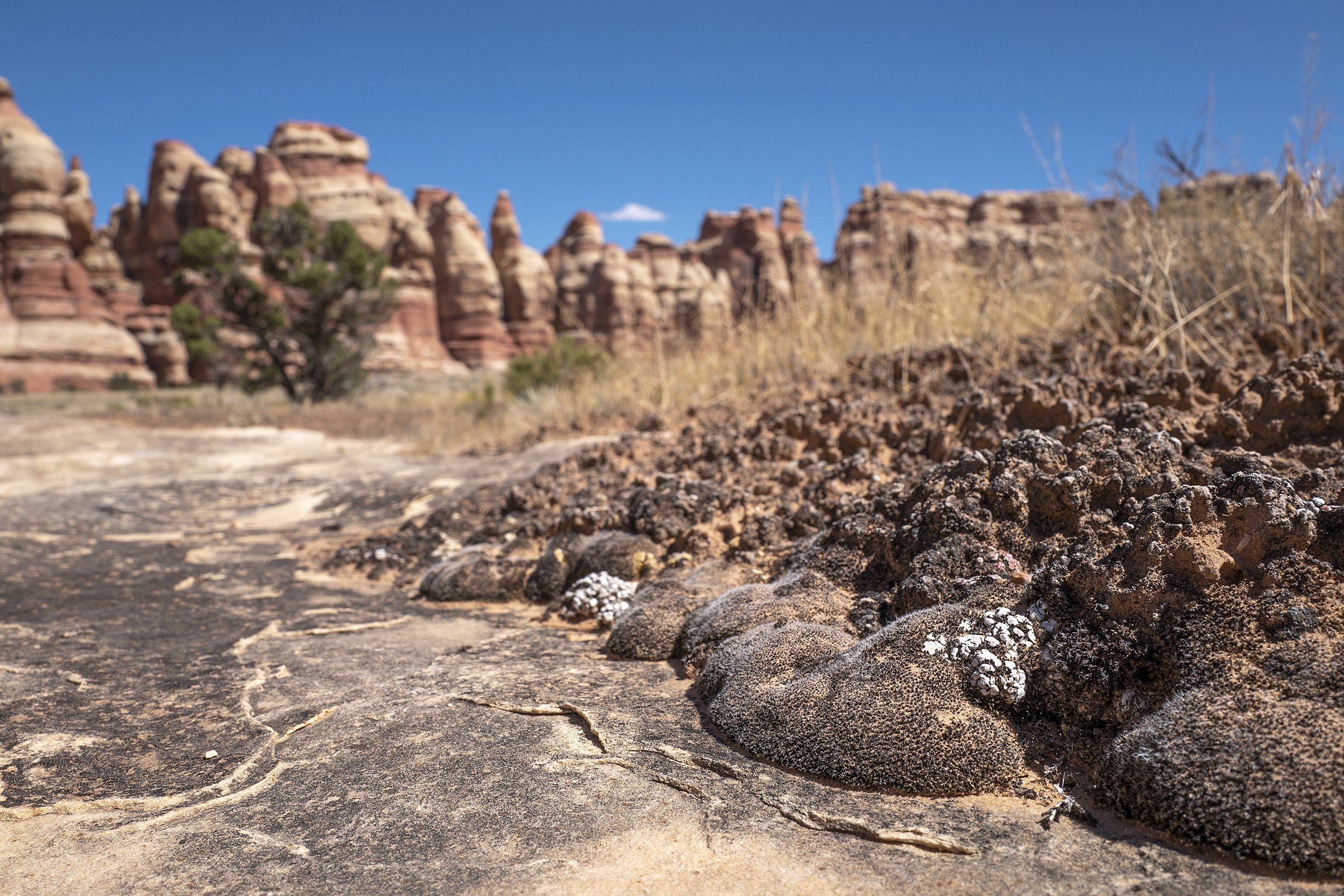 A secret area inside Canyonlands National Park, south of Moab, is pictured onThursday, Sept. 19, 2019. As part of the agreement with the National Park Service, the KSL TV and Deseret News crew promised not to disclose the path's location inside Canyonlands National Park.