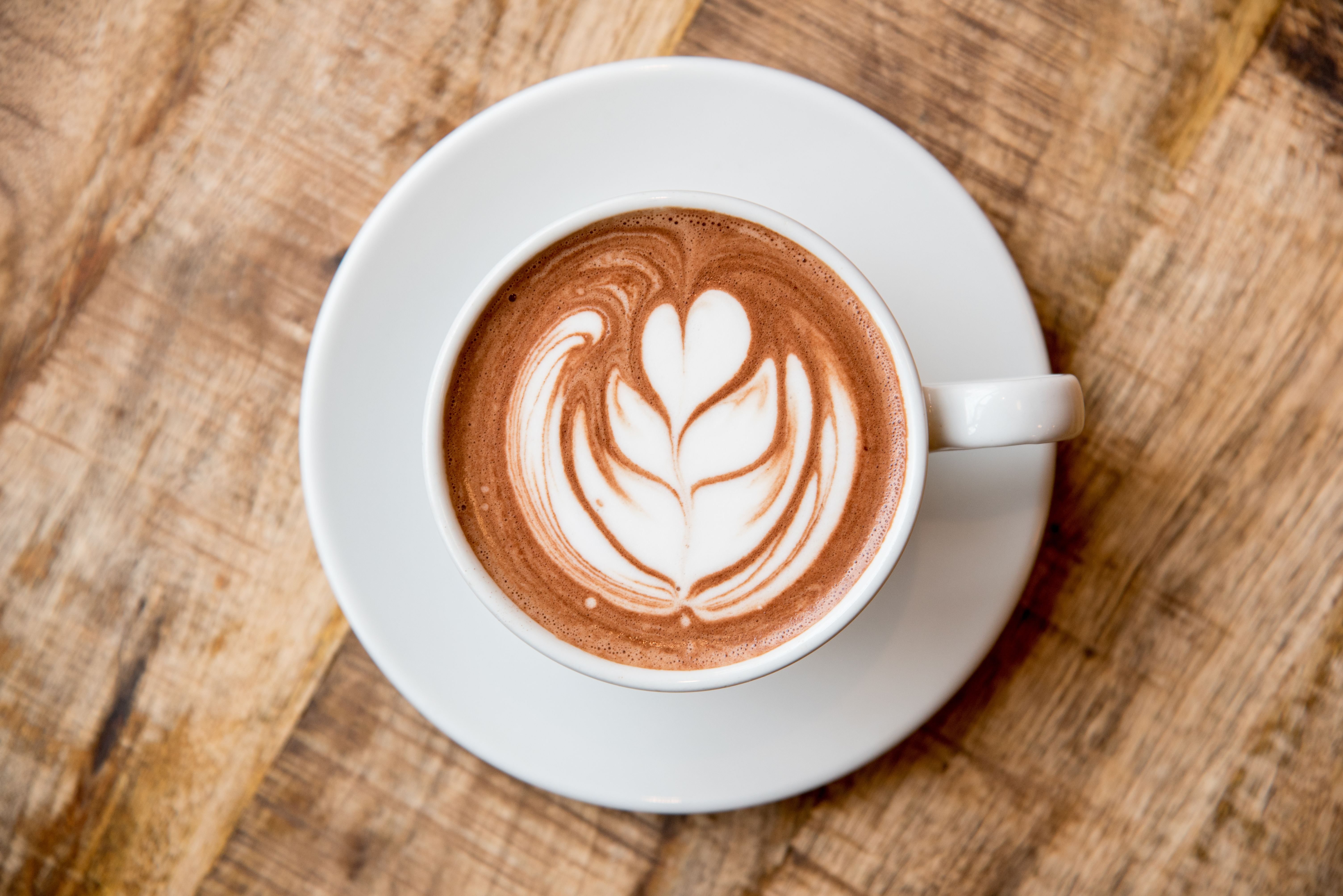 A large white mug holds dark hot chocolate with white latte art heart and leaves.