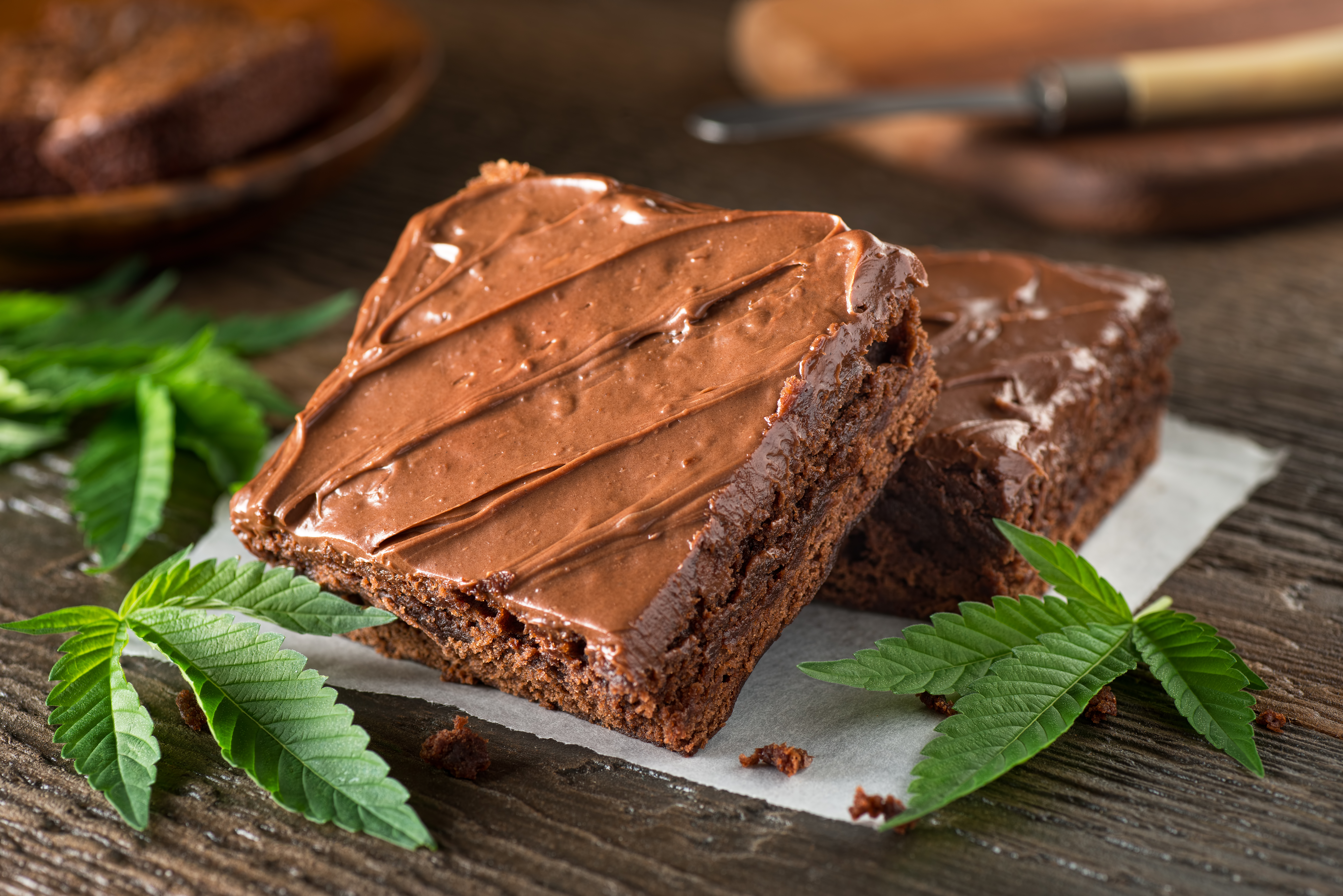 Two brownies surrounded by cannabis leaves.
