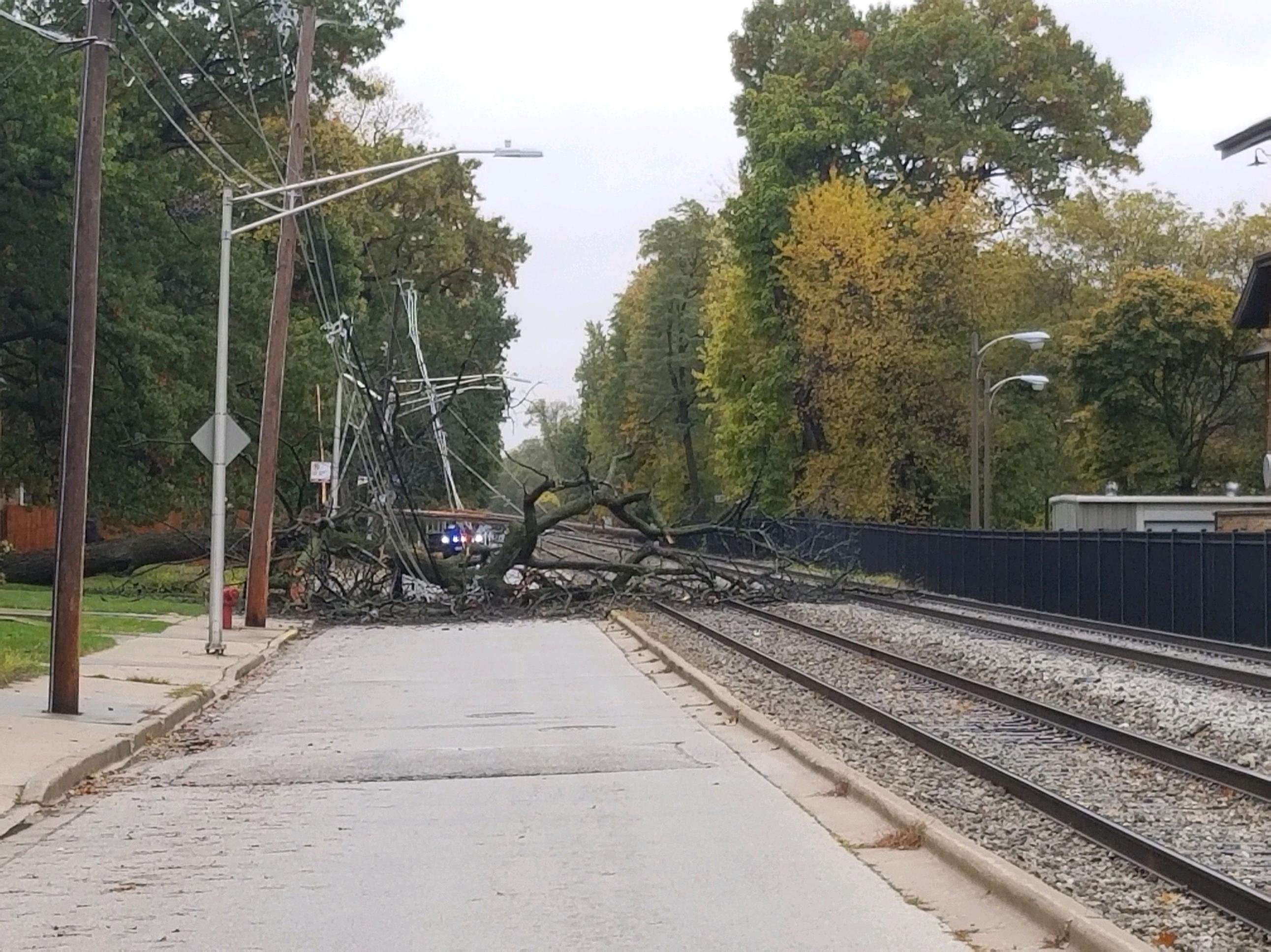 Service was temporarily disrupted on Metra's Rock Island Line because of a downed tree and power lines on the tracks Oct. 30, 2019, in Beverly.