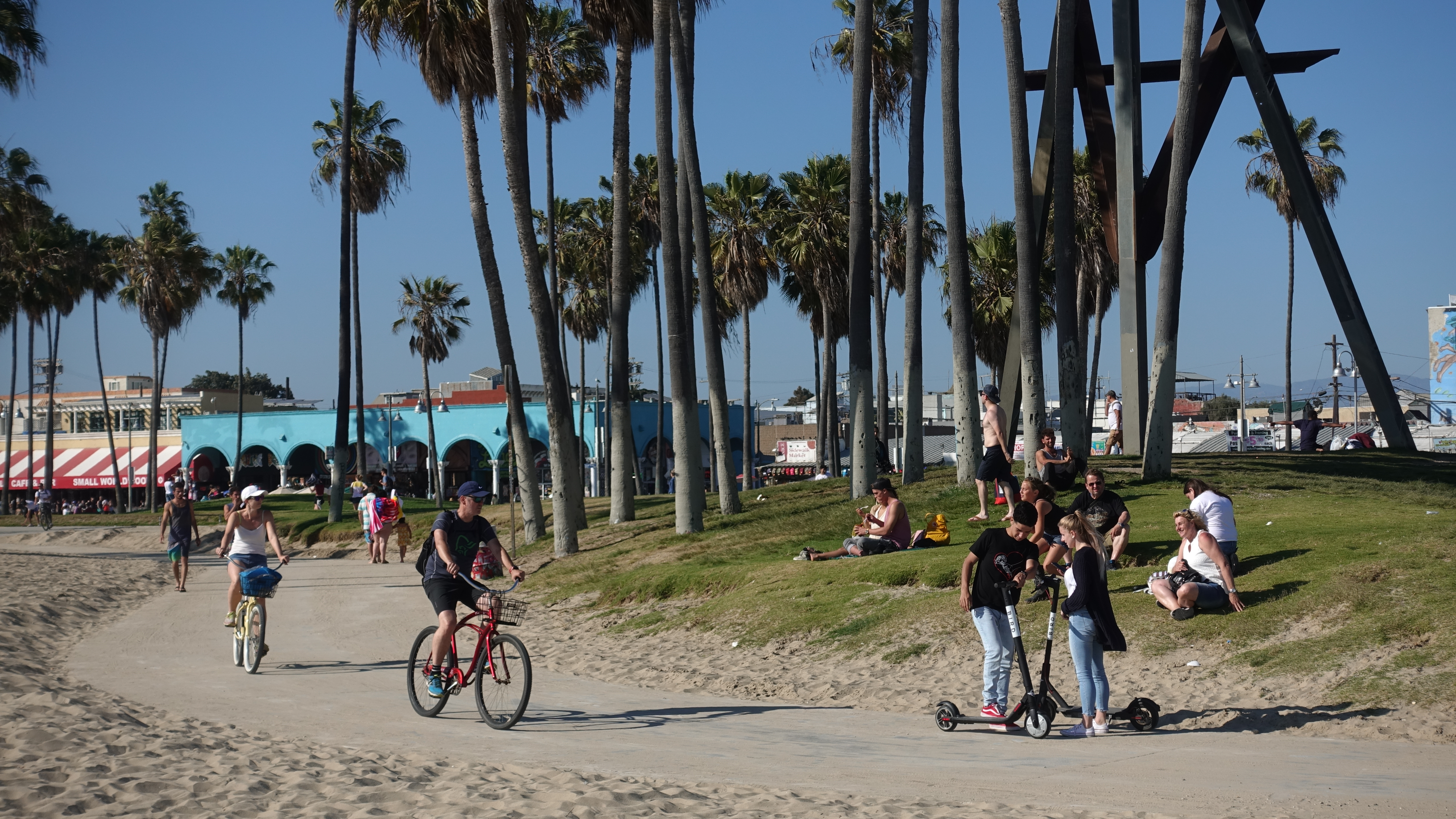A small group of people travel down a path on bikes and scooters surrounded by blue skies and palm trees.