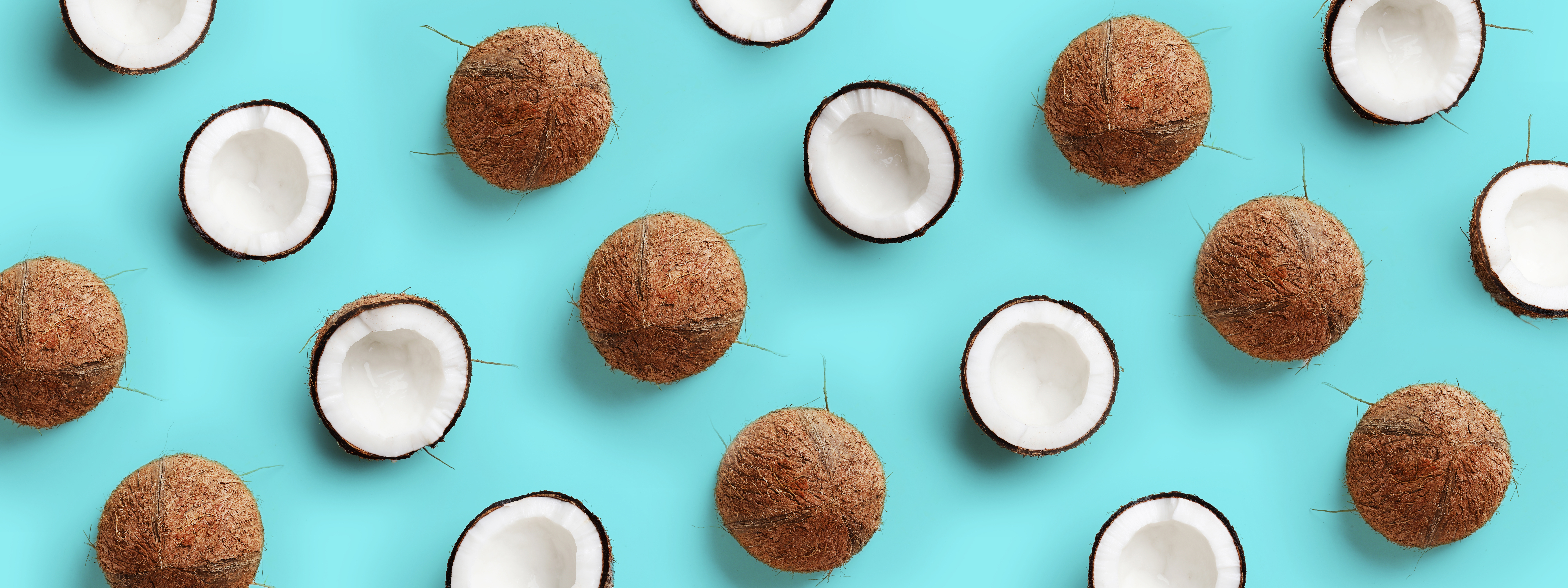 Coconuts arranged in a pattern on a blue background.