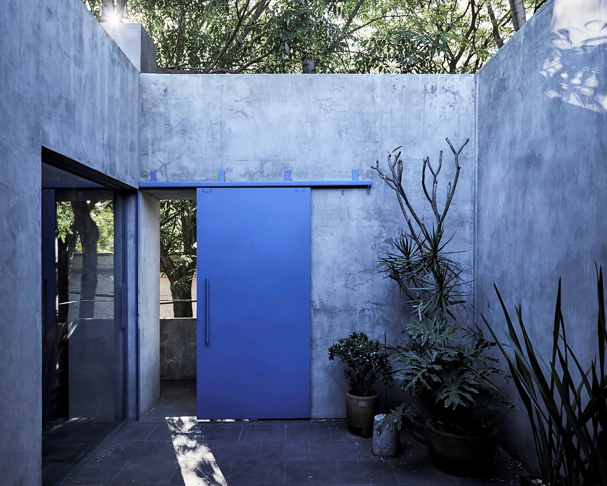 A concrete house with a blue front door features an enclosed courtyard with cactus and succulent plants.