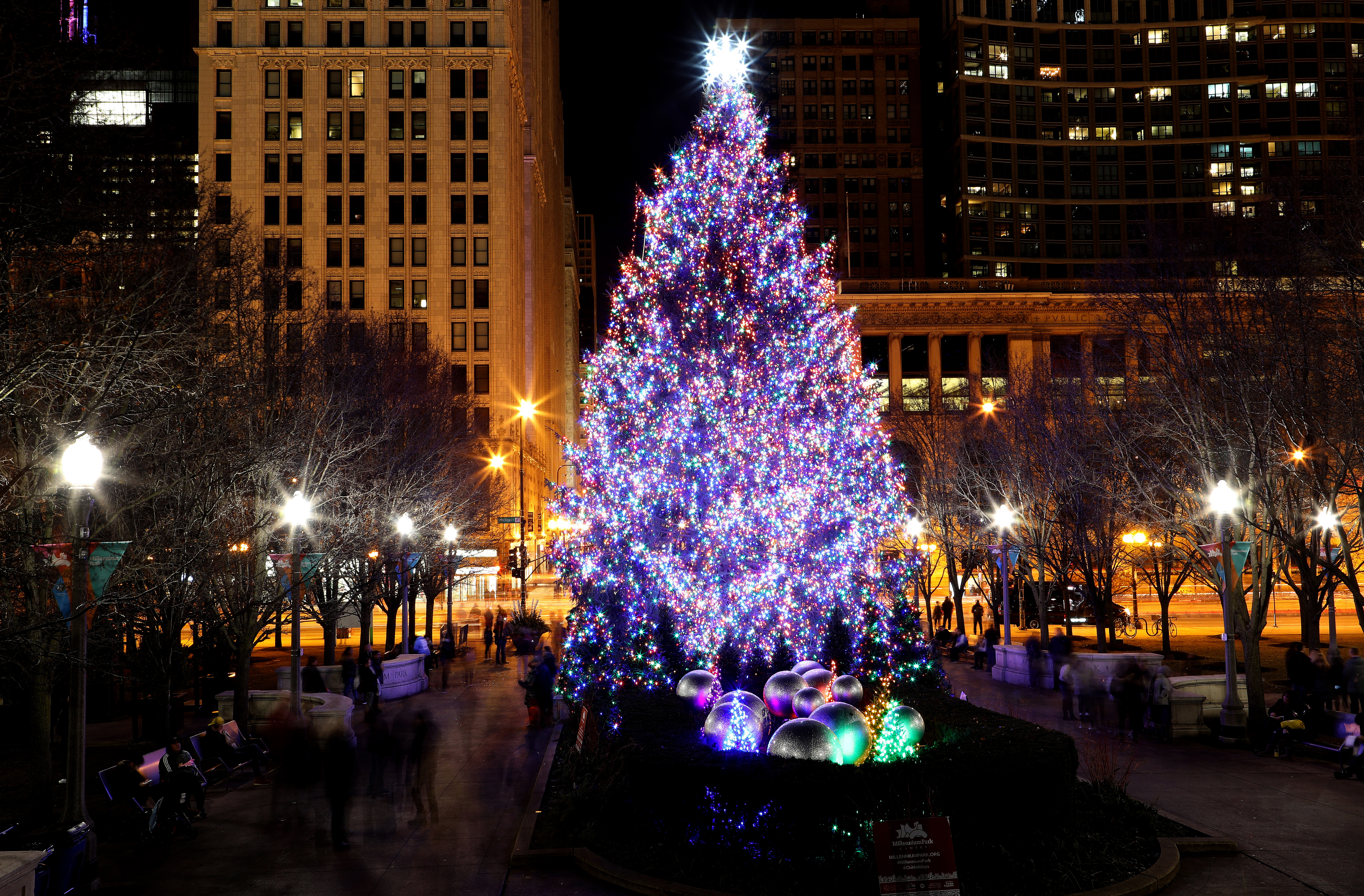 A brightly lit Christmas tree in a city park at night.