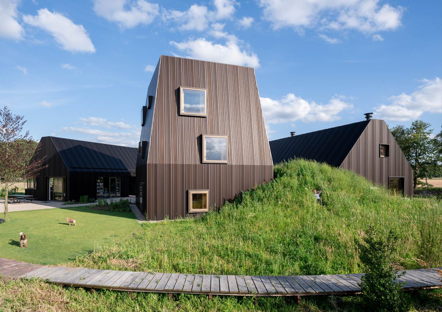 Exterior of black clad house with square windows set into a grassy mound.