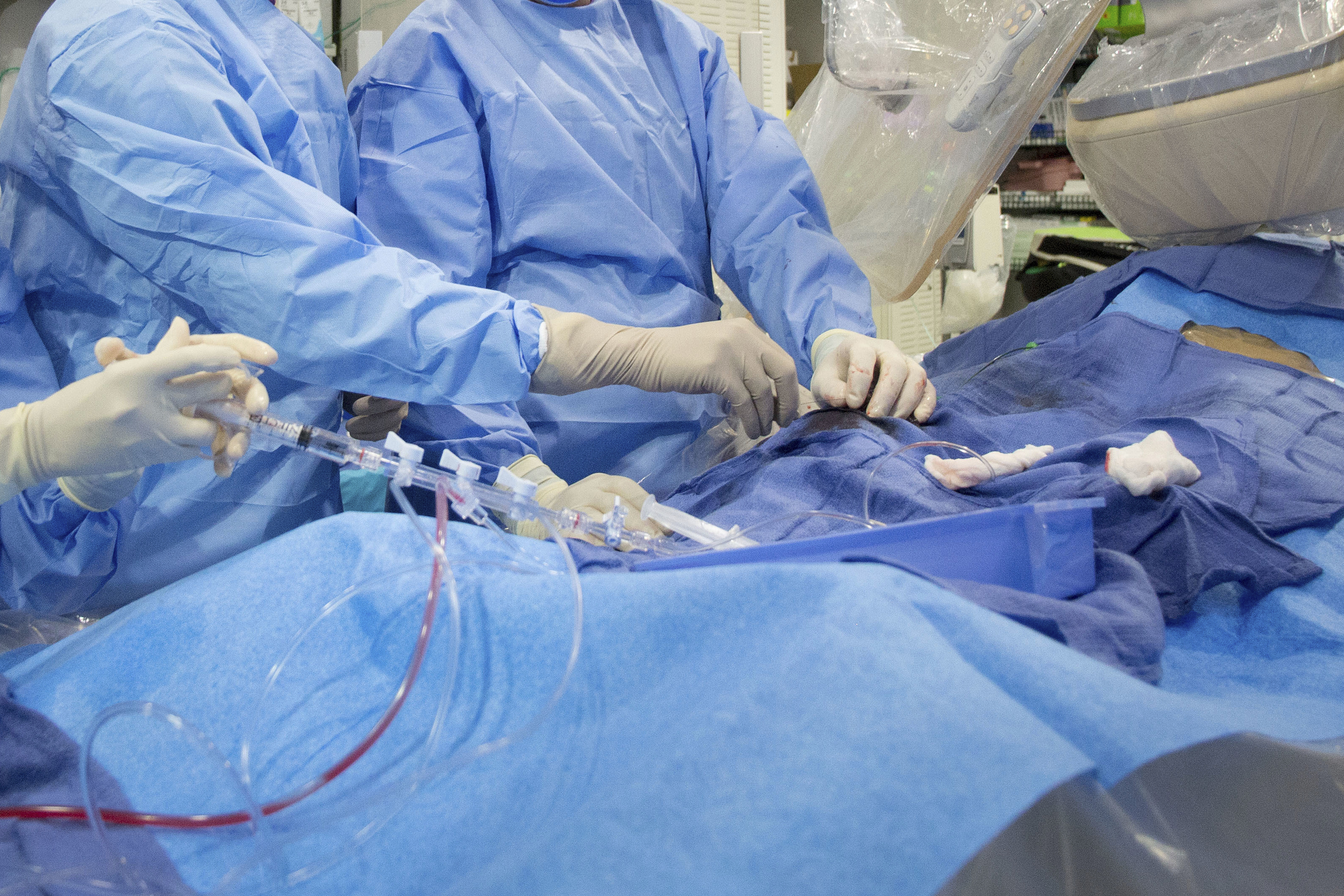 Surgeons perform a non-emergency angioplasty at Mount Sinai Hospital in New York. Through a blood vessel in the groin, a tube is guided to a blockage in the heart.