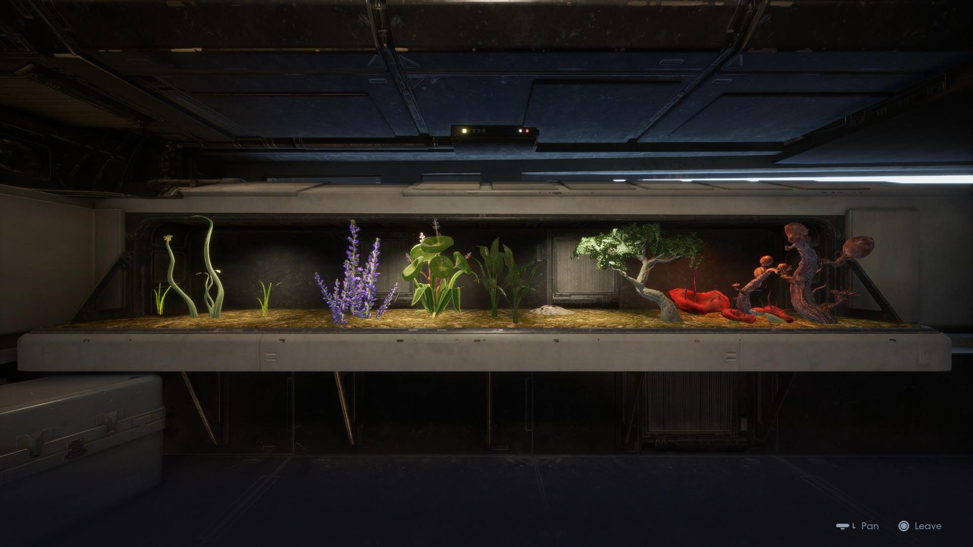 Greez's terrarium in Fallen Order