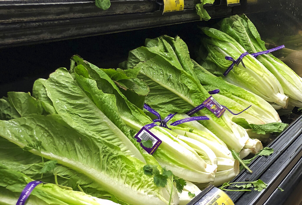 Lettuce at a grocery store