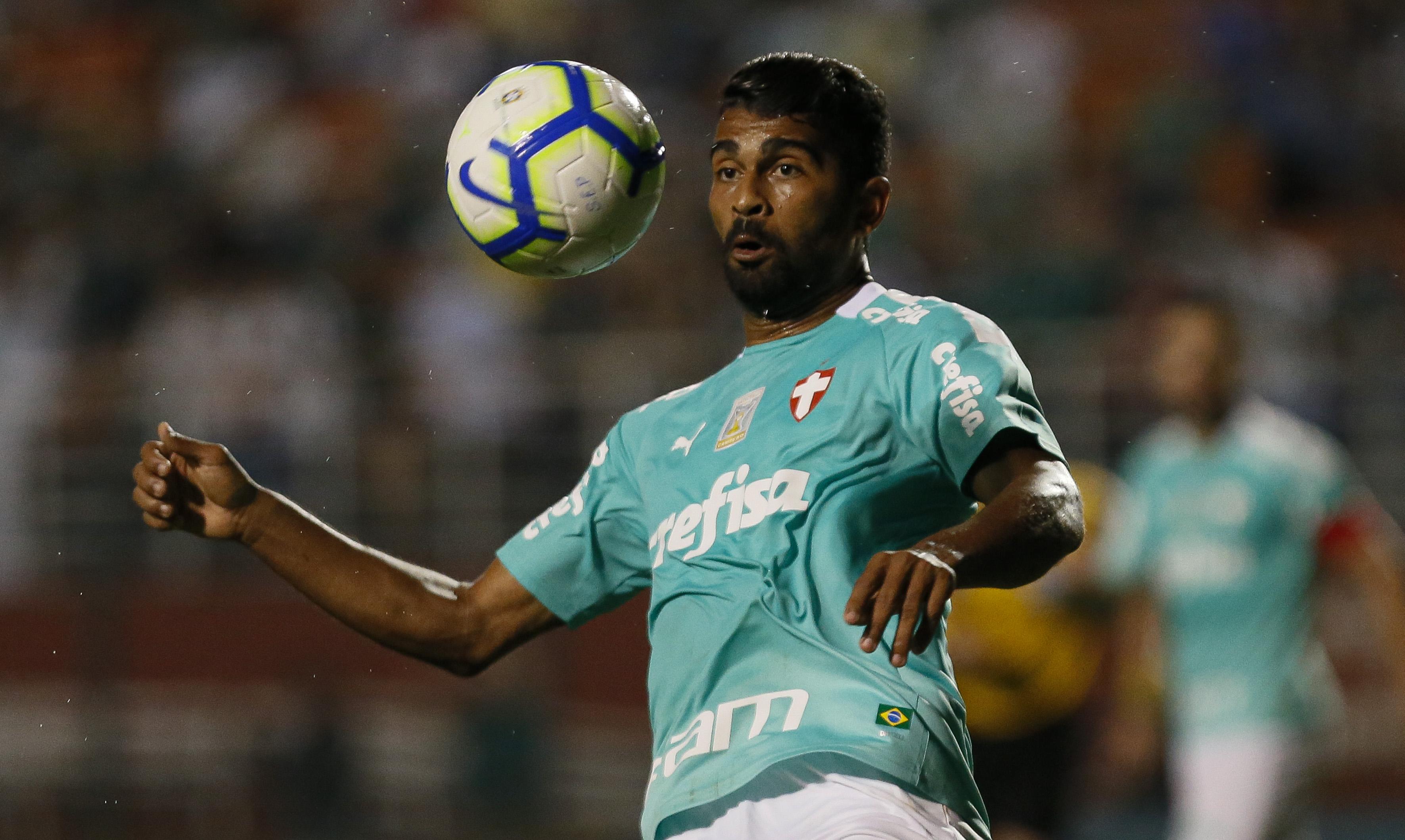 Palmeiras v Botafogo- Brasileirao Series A 2019