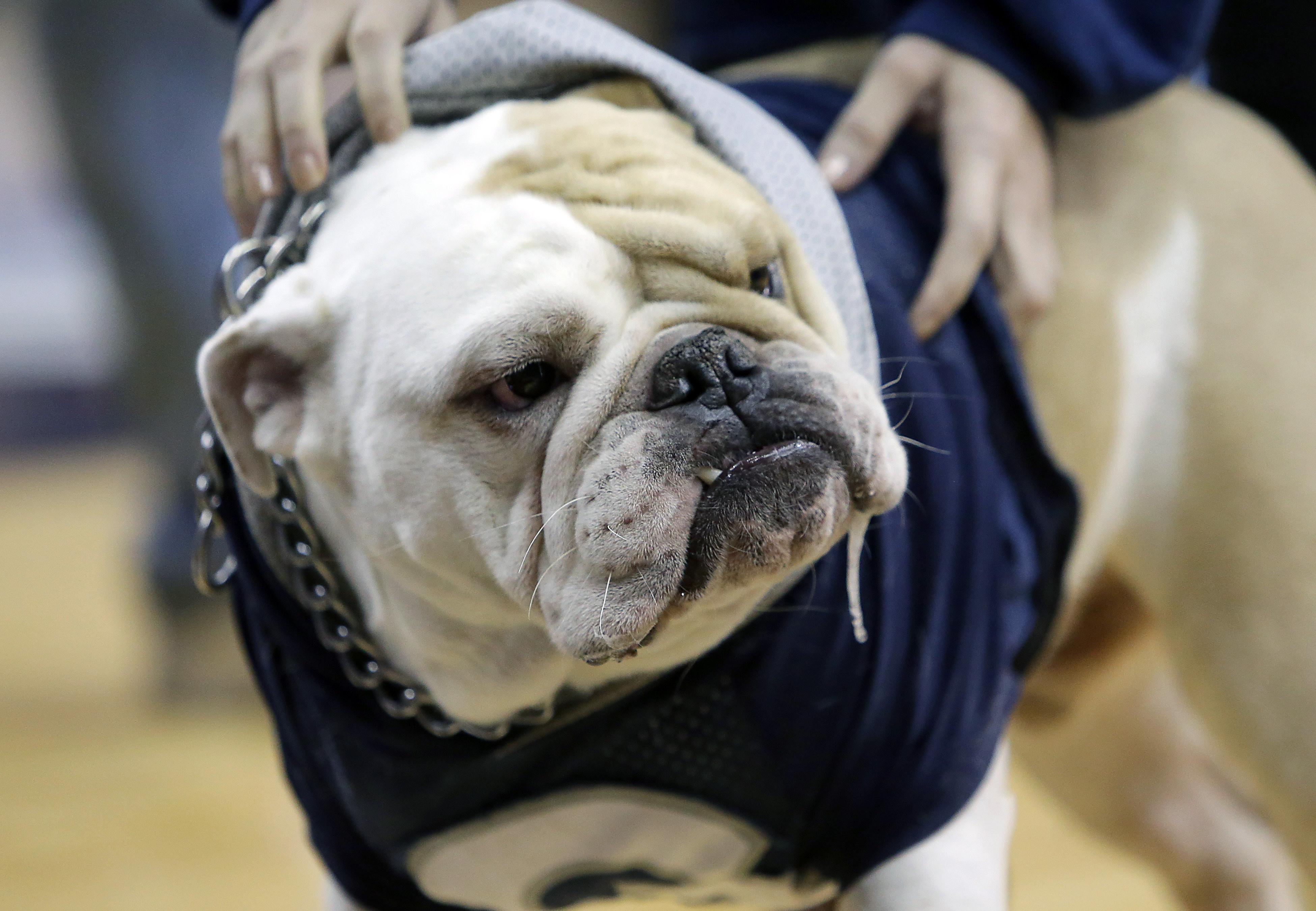 NCAA BASKETBALL: JAN 09 DePaul at Georgetown