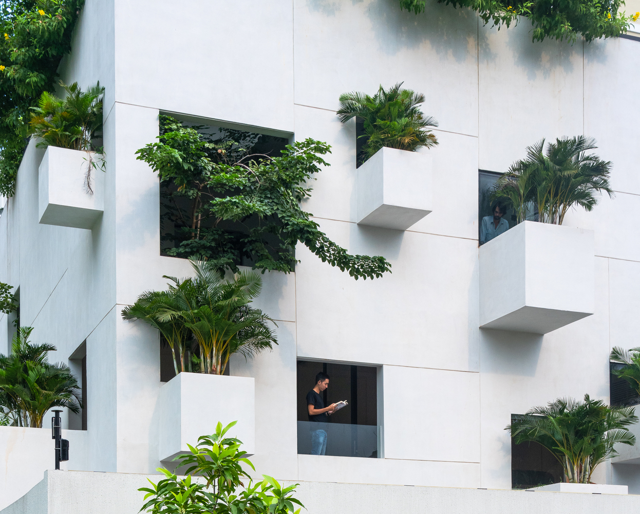 Modern home looks like a Jenga tower planted with trees
