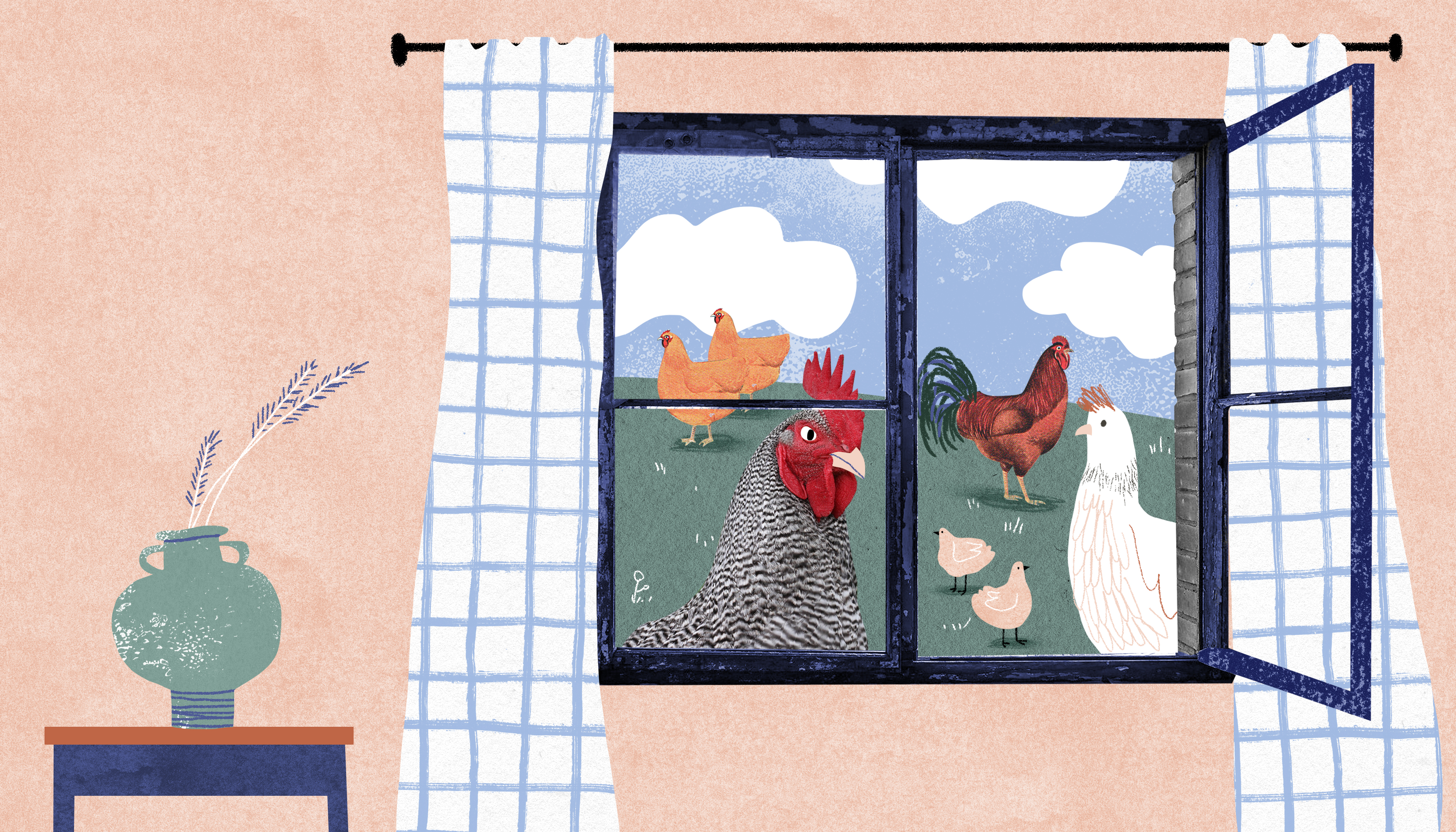 An open window on a peach wall with white and blue gridded curtains. The window looks onto a backyard scene where chickens and chicks roam happily. Illustration.