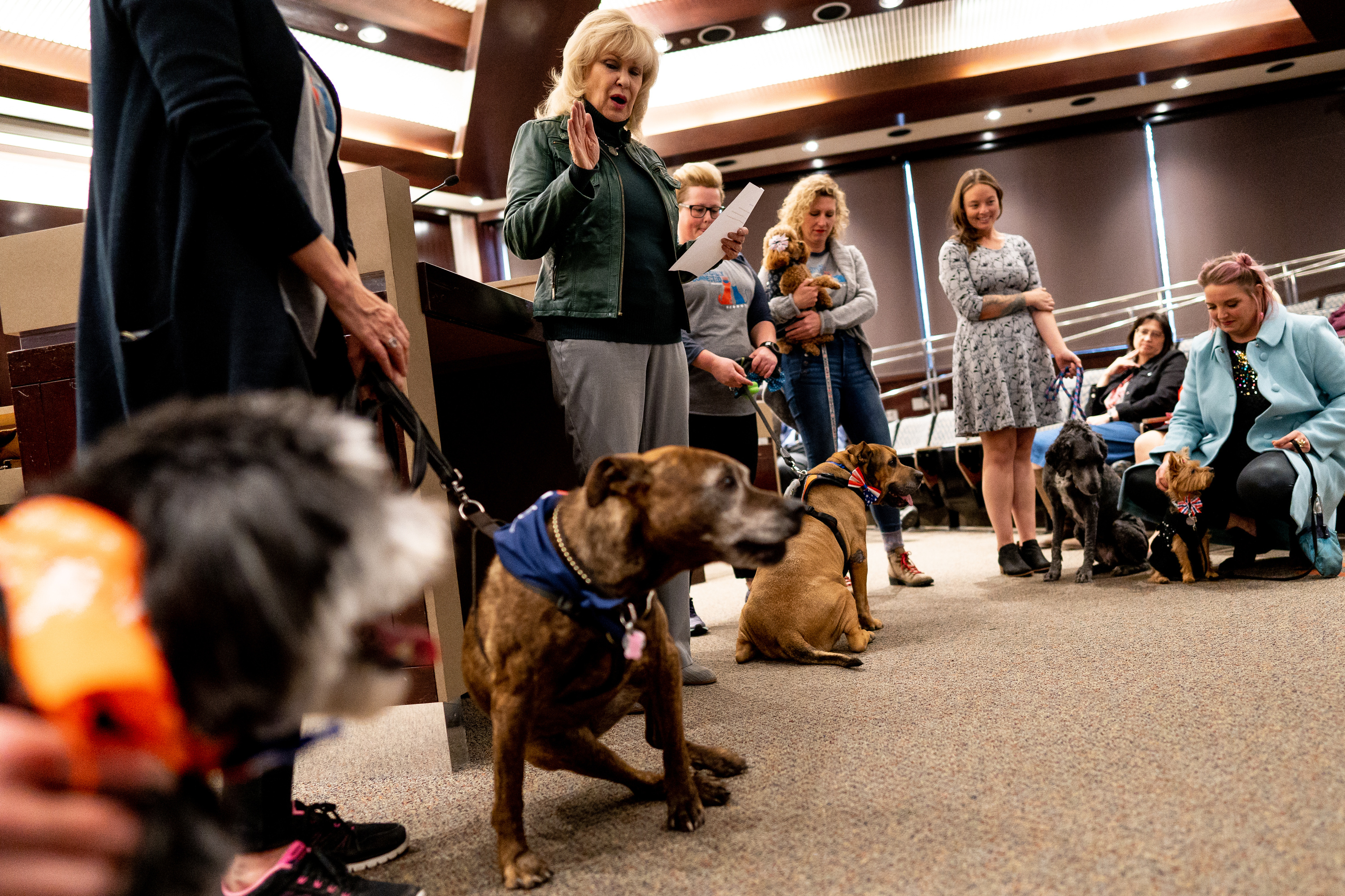 Salt Lake County Clerk Sherry Swensen swears in the nine-member PAWlitical council at the Salt Lake County Government Center in Salt Lake City on Tuesday, Dec. 10, 2019.