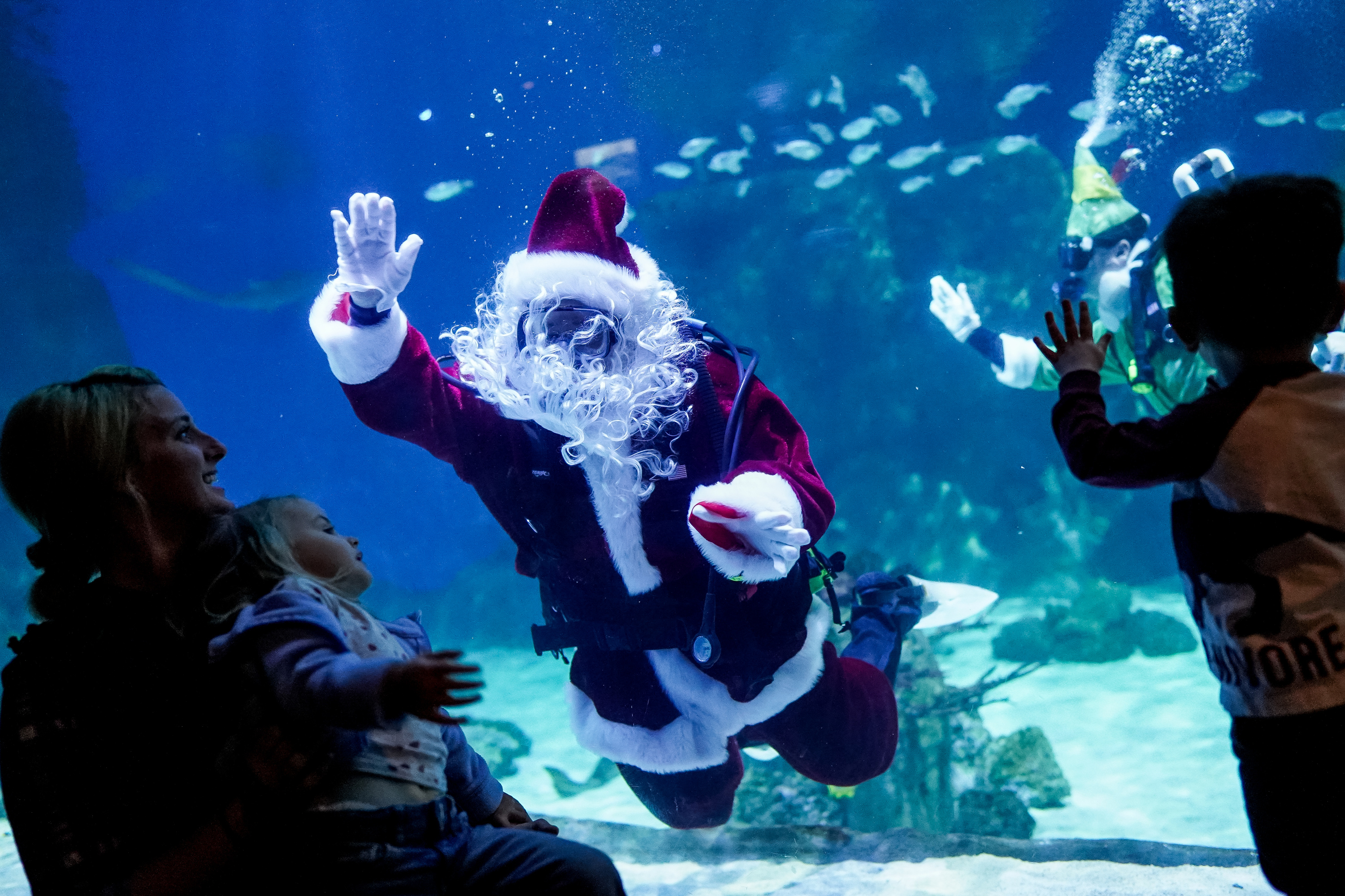 Brittany Calder and her daughter, Leah, 2, and Calvin Laskowski, 2, watch as Santa and one of his elves scuba dive at the Loveland Living Planet Aquarium in Draper on Wednesday, Dec. 11, 2019.