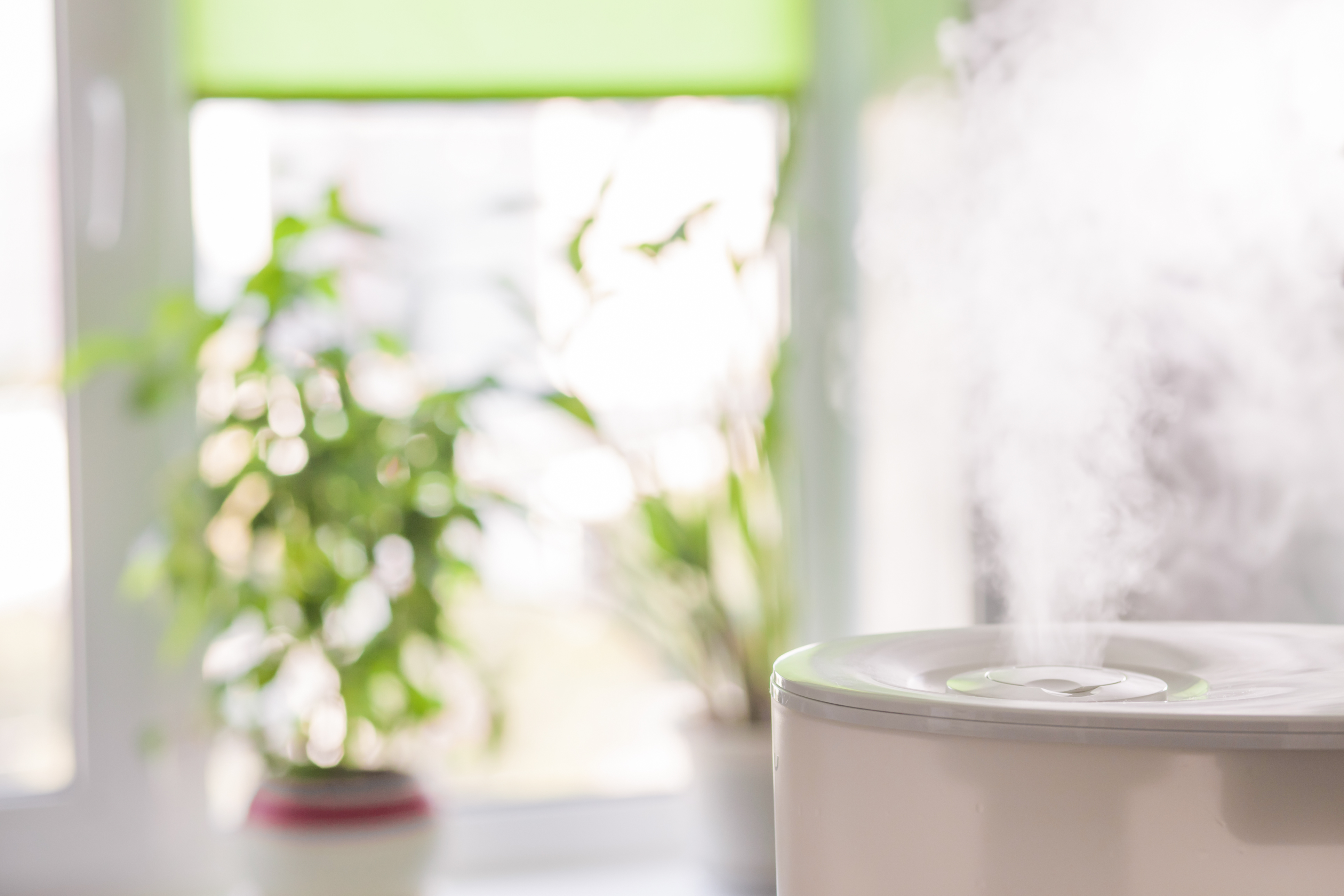 Whole House Air Purifier in Living Room.