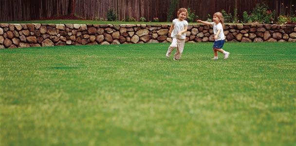 Kids Running Around Lawn